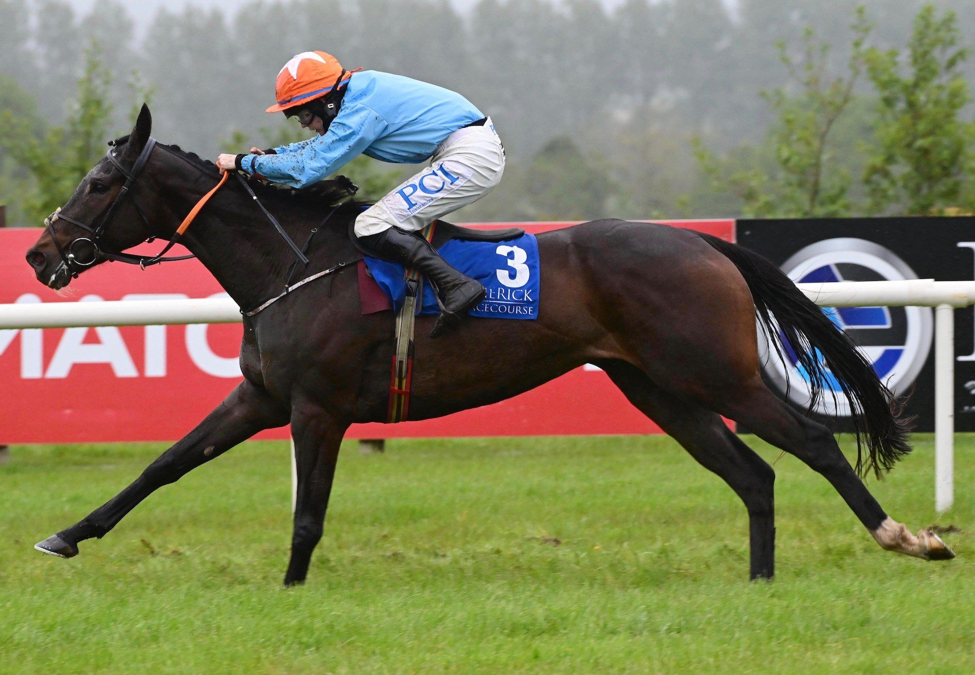 Western Cowboy (Westerner) Wins The Maiden Hurdle At Limerick