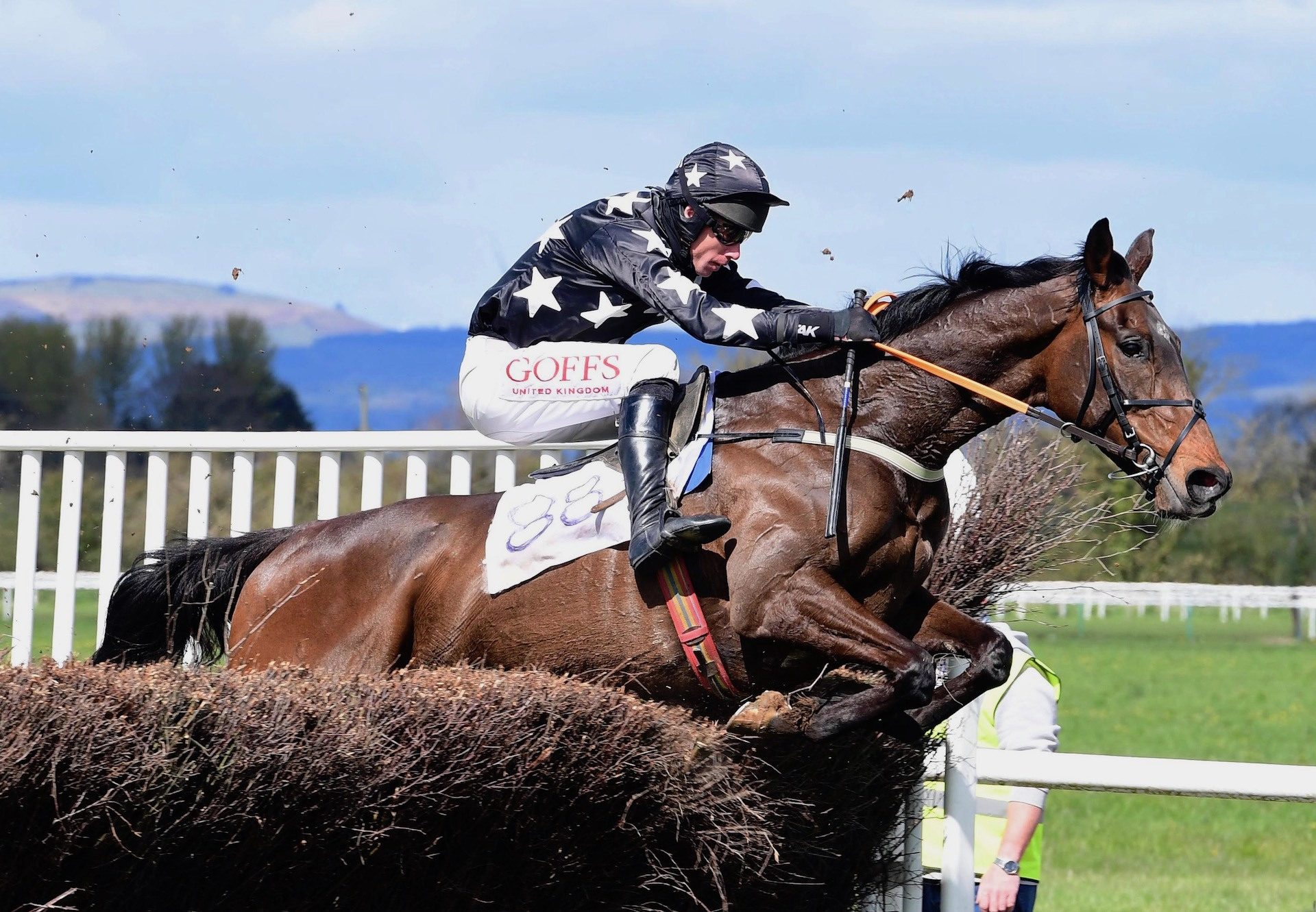 Western Flyer (Westerner) Wins The Five Year Old Maiden At Tipperary