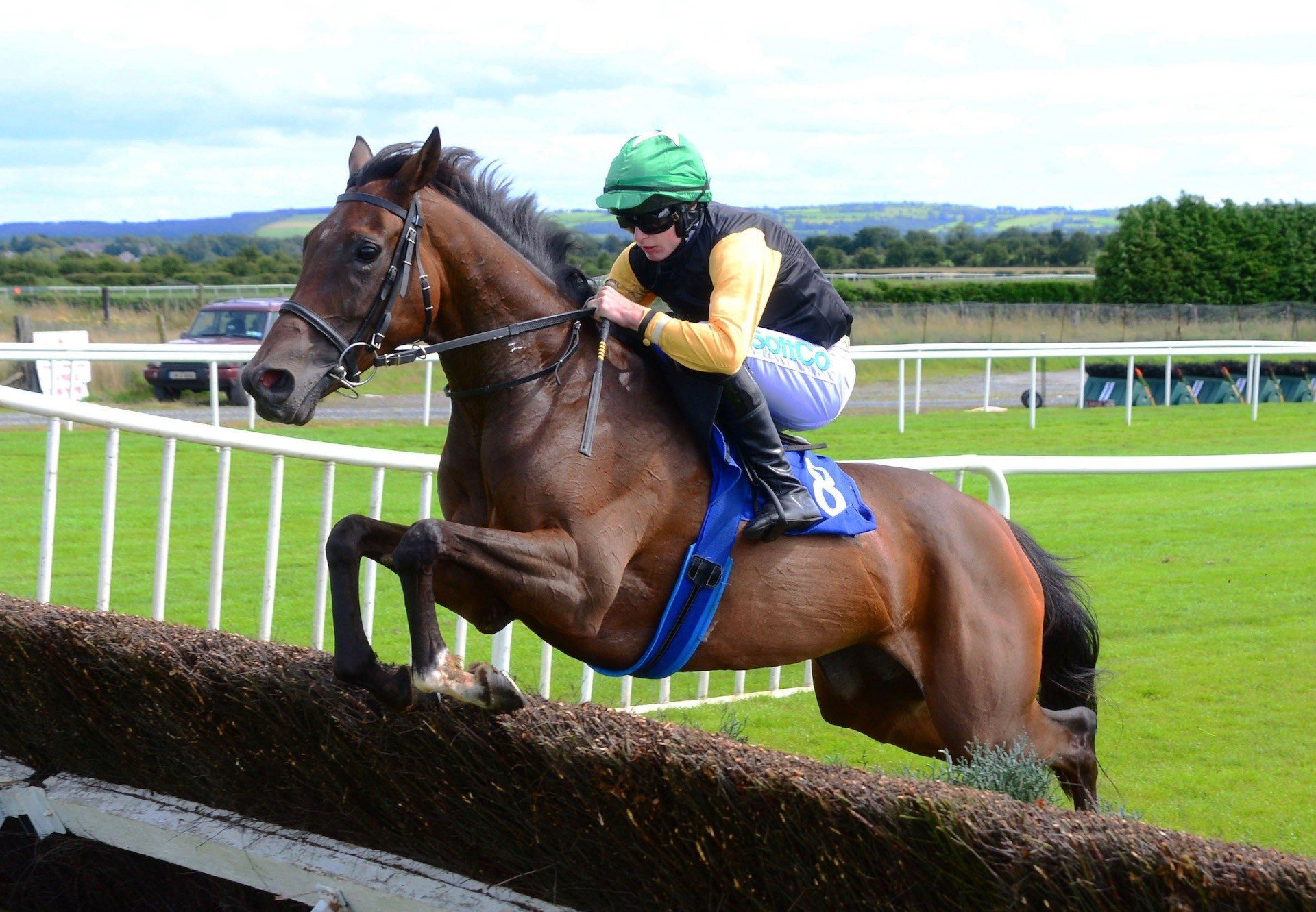 Western Victory (Westerner) Wins Beginners Chase At Roscommon