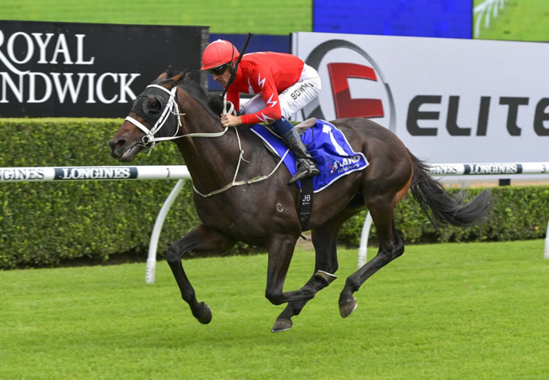 Wheelhouse (Pierro) winning at Randwick