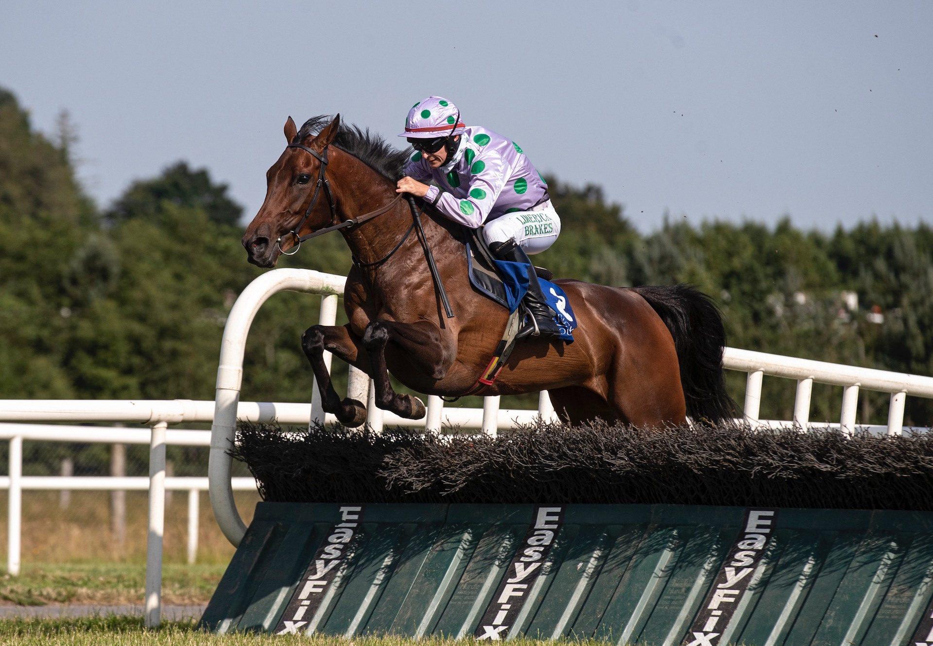 Whosgotyanow (Getaway) Wins The Mares Rated Novice Hurdle At Limerick