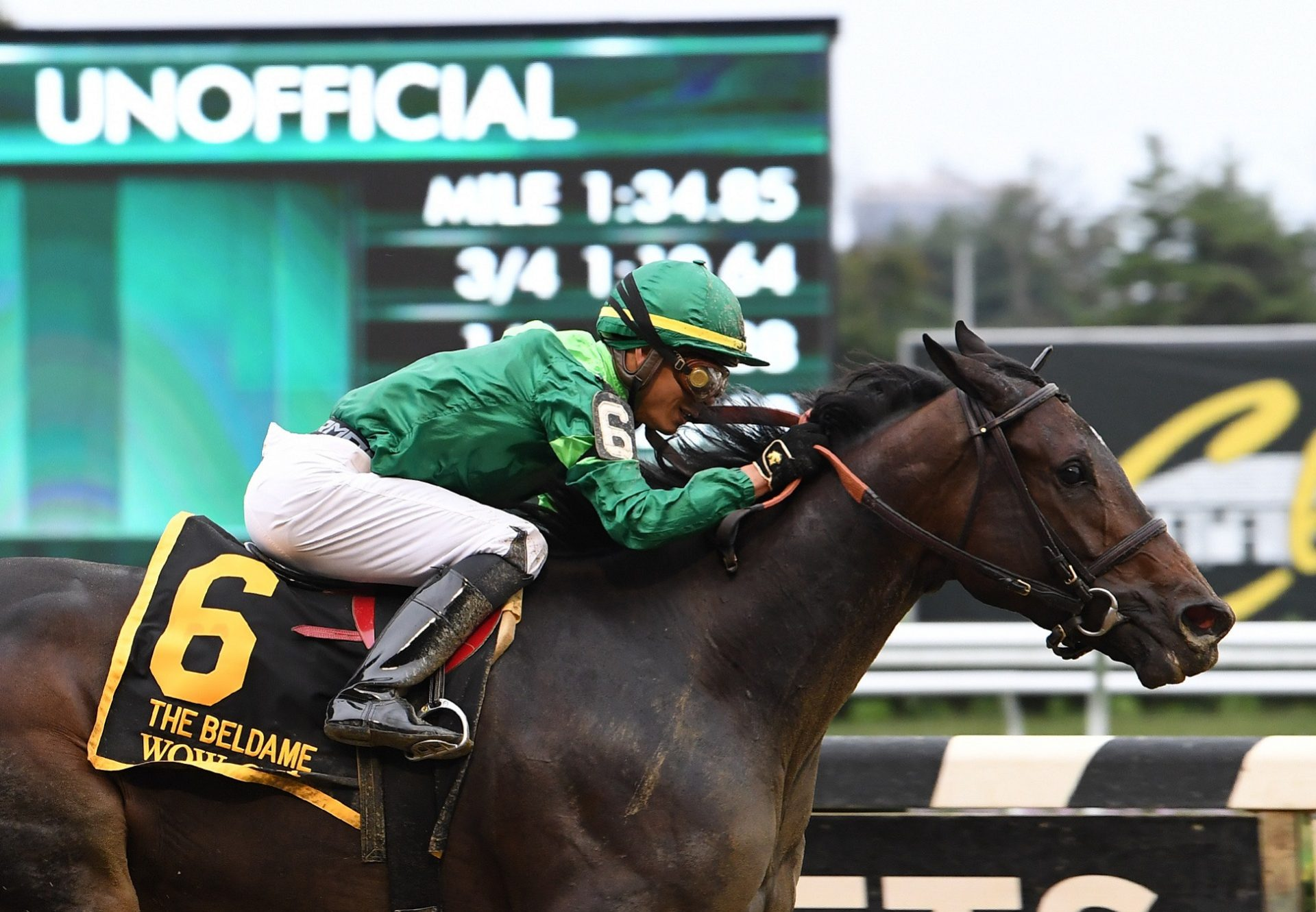 Wow Cat (Lookin At Lucky) winning the Grade I Beldame Stakes at Belmont Park