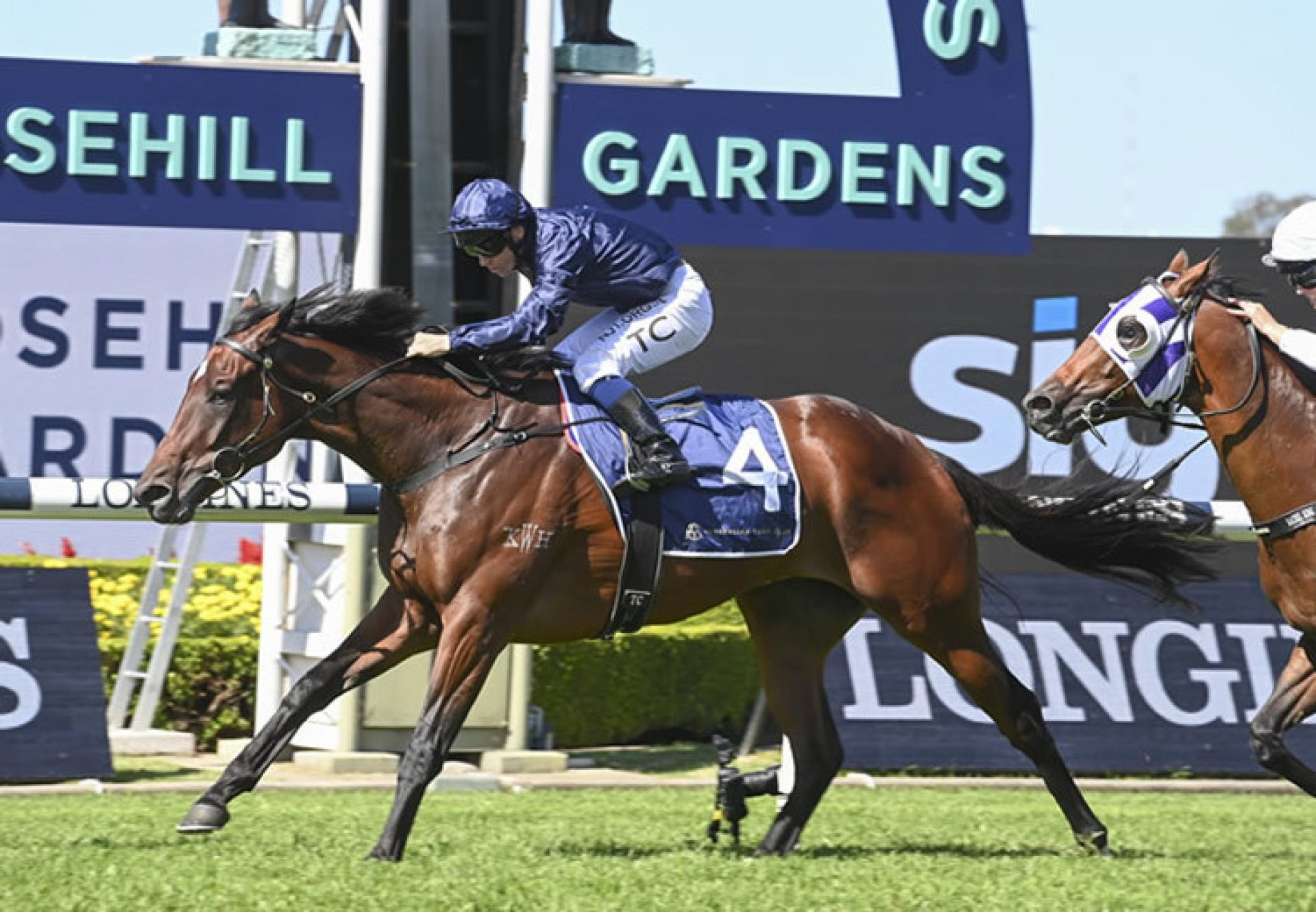 Yaletown (Westerner) winning the Gr.2 Tulloch Stakes at Rosehill