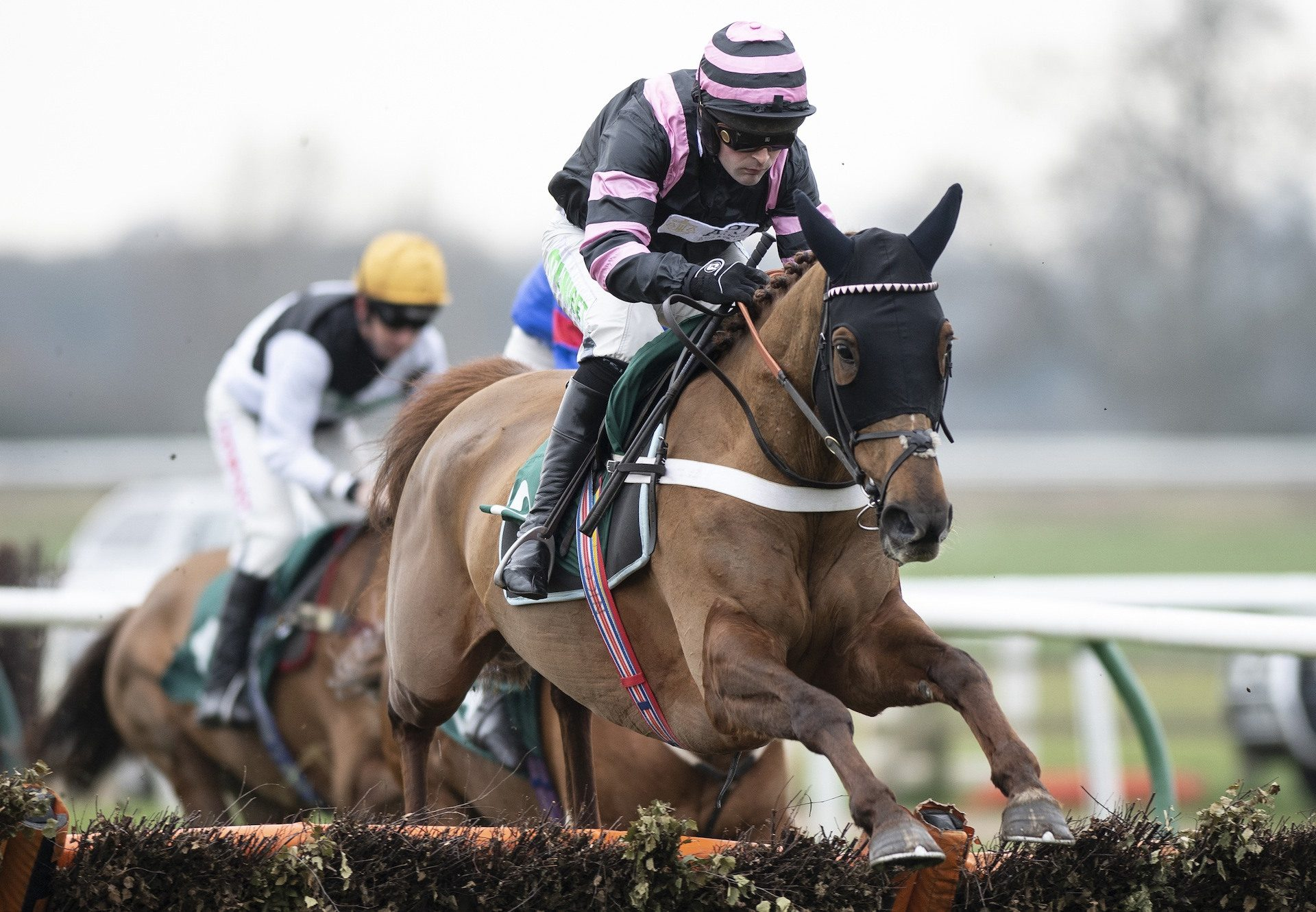 Yellow Dockets (Getaway) Remains Unbeaten Over Hurdles At Warwick