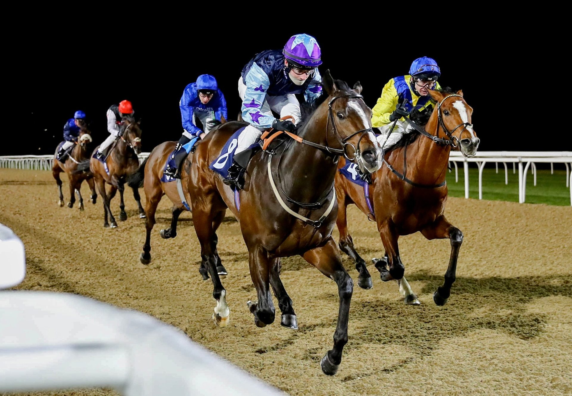 Glenfiddich (Fastnet Rock) finishing second in the Gr.1 Champagne Stakes to King's Legacy