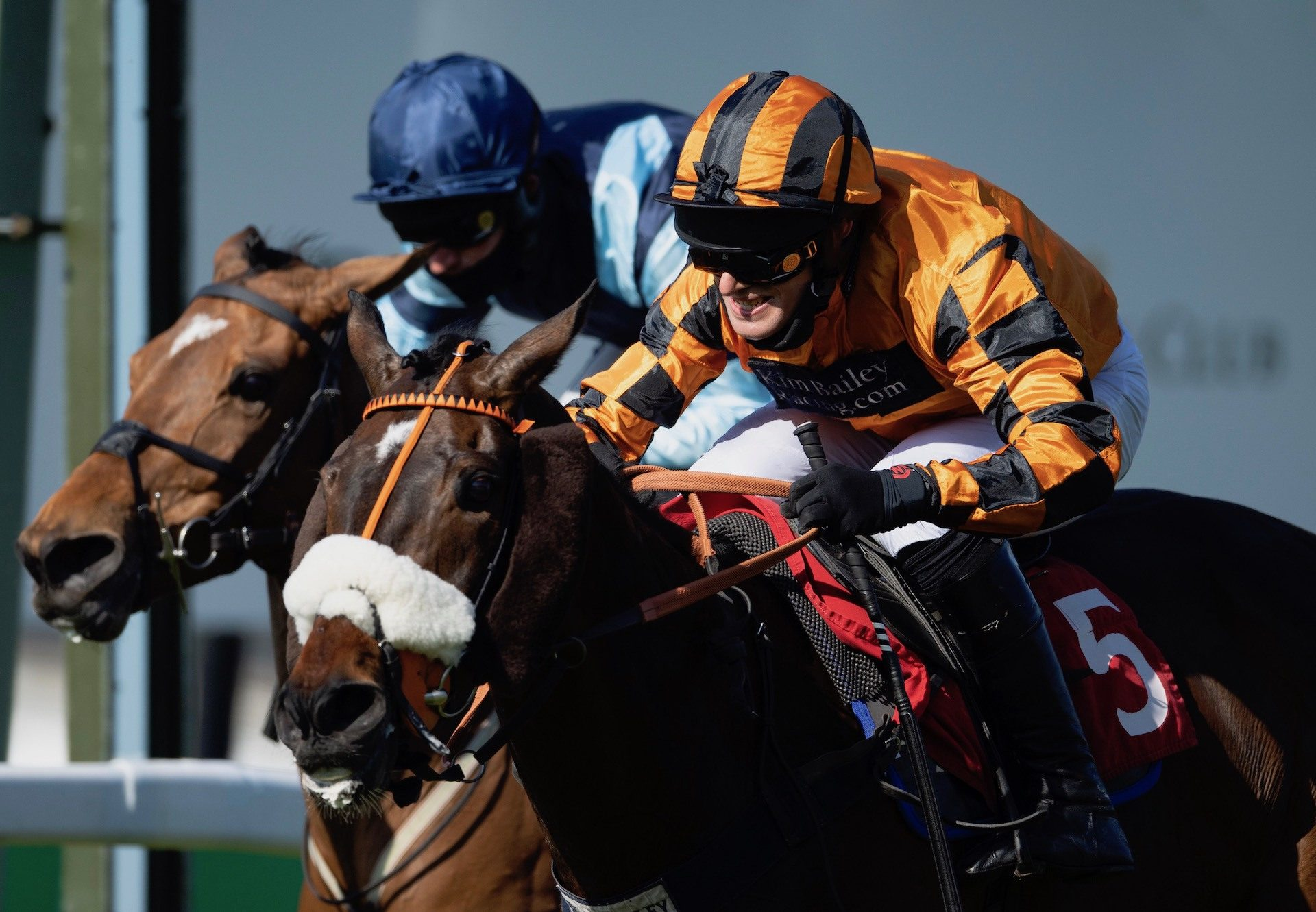 Younevercall (Yeats) Wins His Second Grade 2 Bet365 Select Hurdle At Sandown