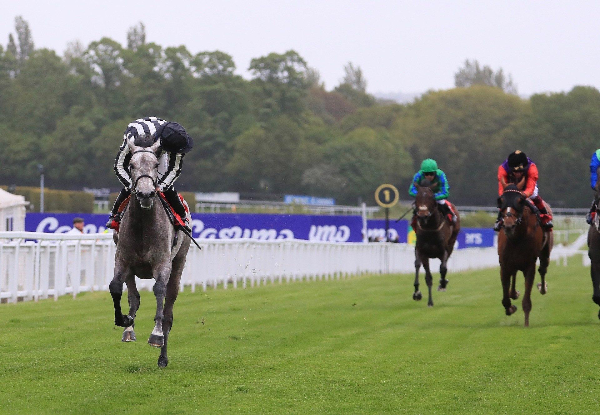 Zinc White (Vadamos) Wins Impressively At Sandown