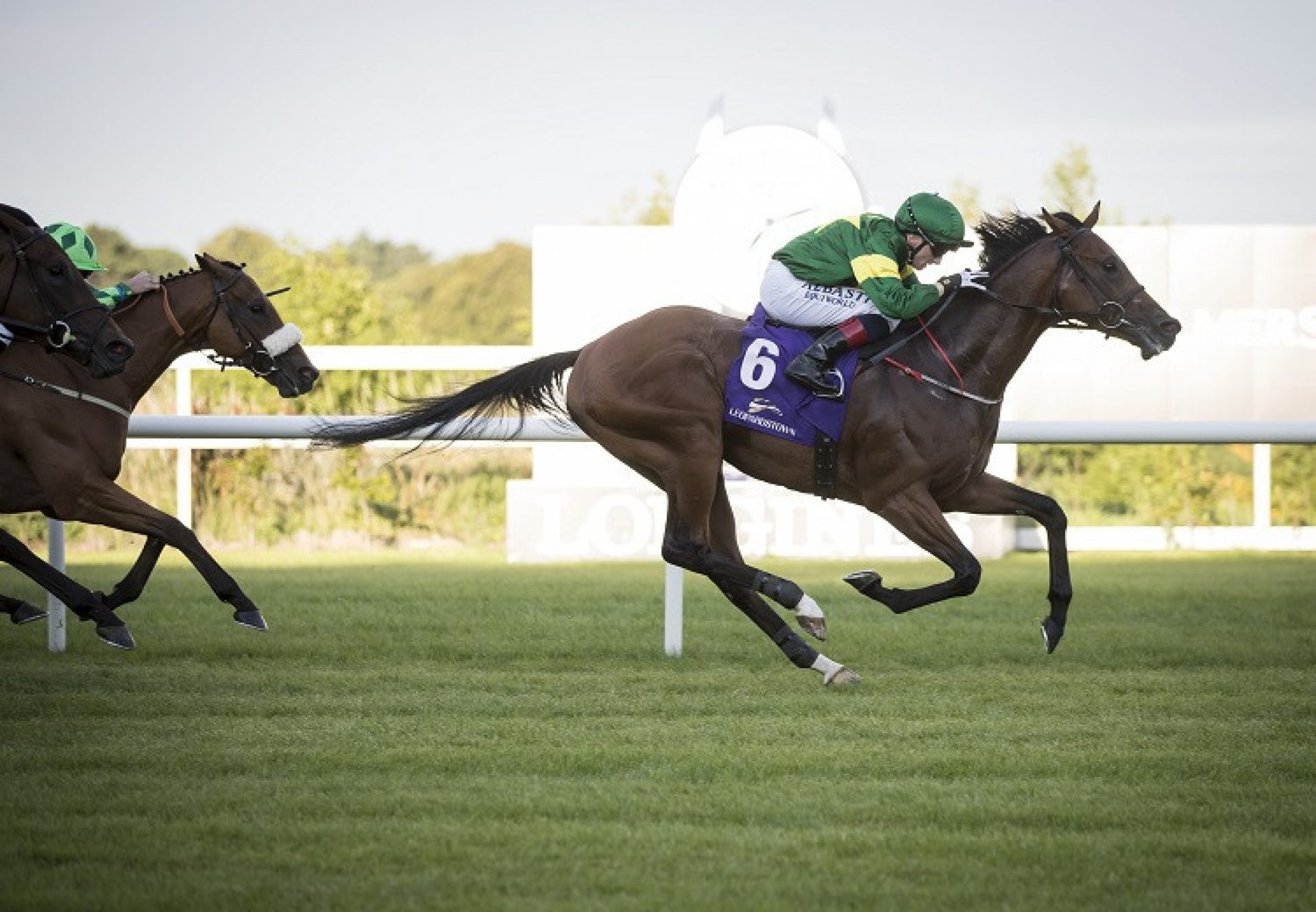Alexios Komnenos (Choisir) winning the G3 Desmond Stakes at Leopardstown