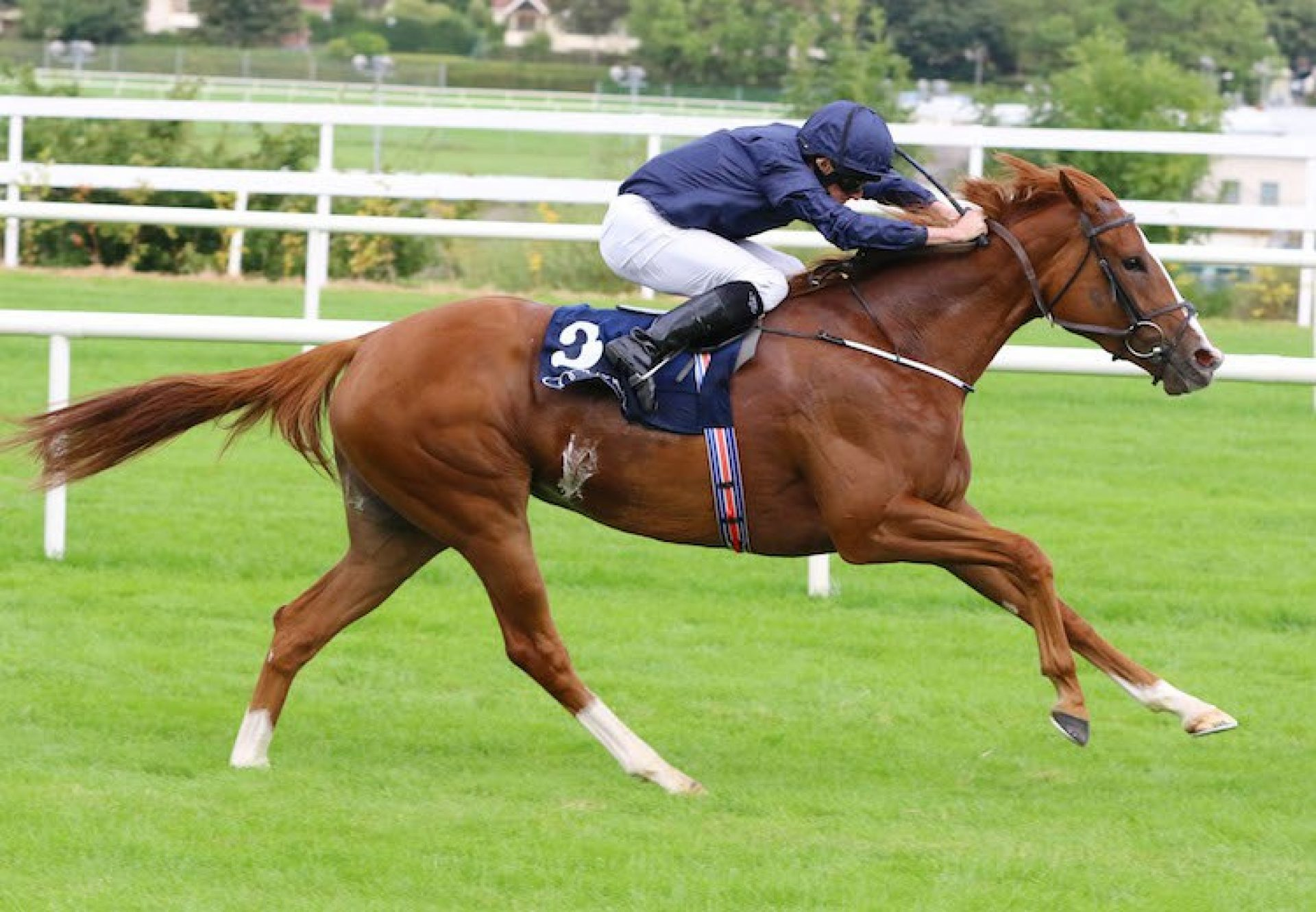 Alice Springs (Galileo) winning the G1 Matron Stakes at Leopardstown