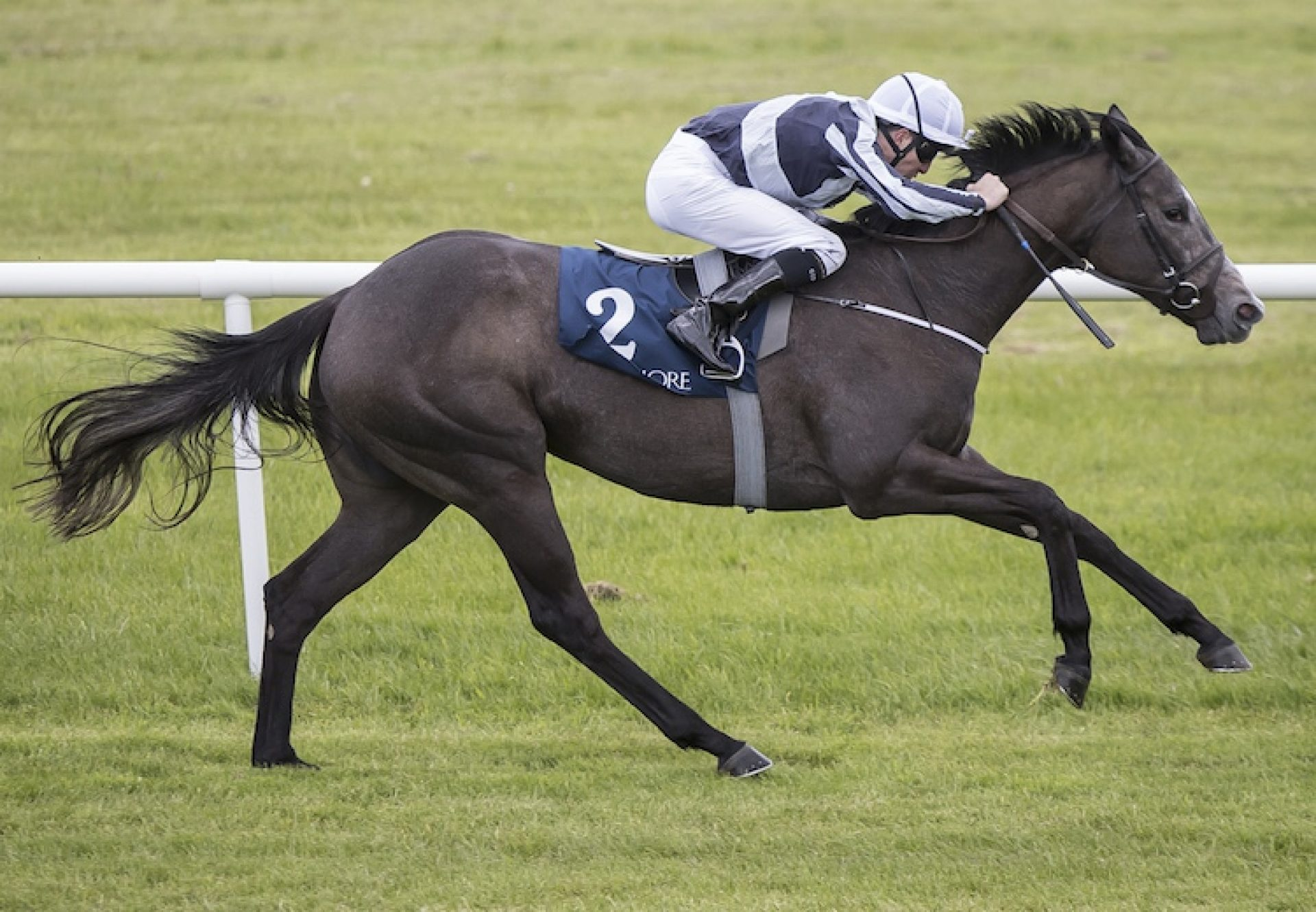 Alpha Centauri (Mastercraftsman) winning the Fillies Sprint Stakes at Naas