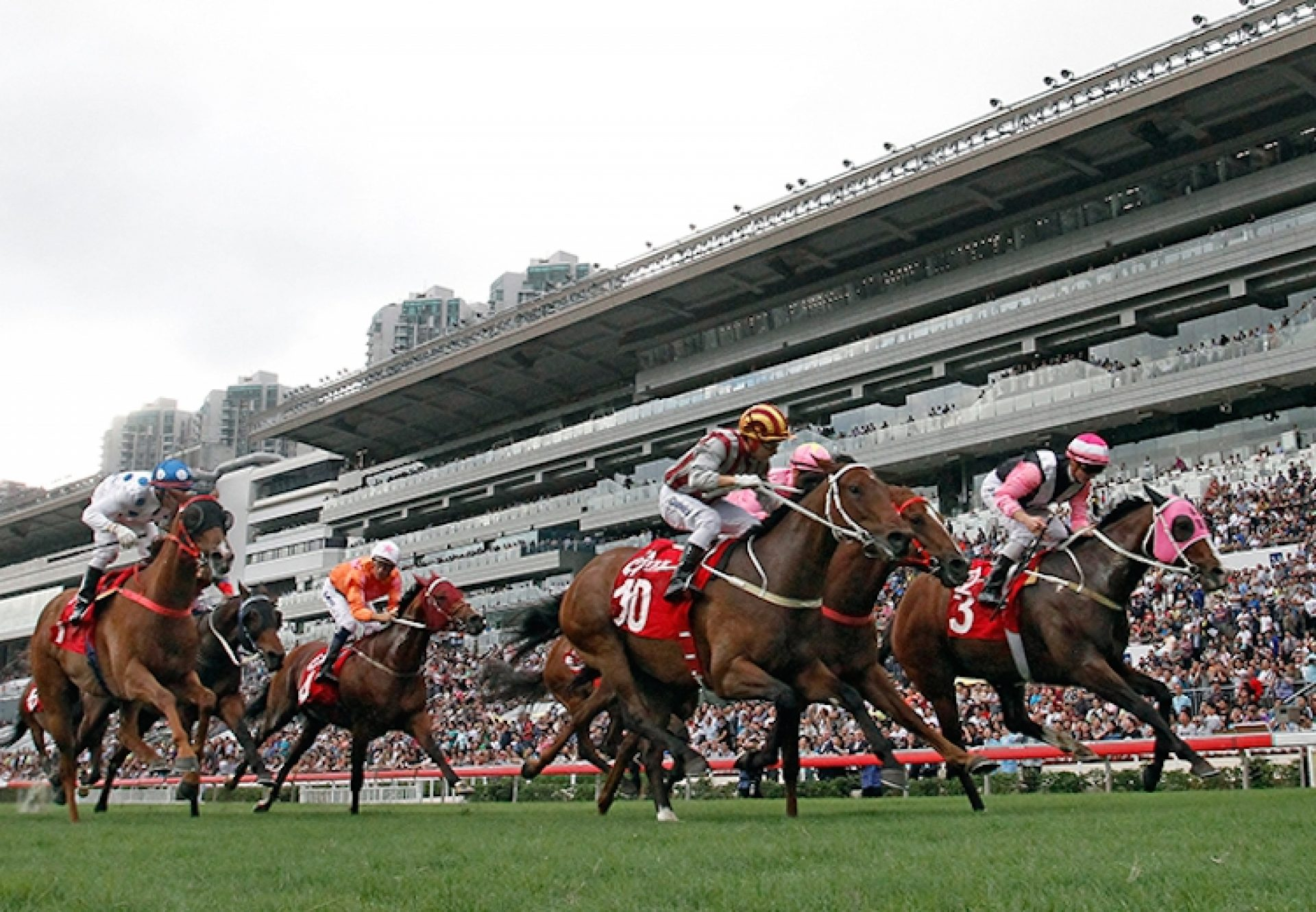 Beauty Only (Holy Roman Emperor) winning the G2 BOCHK Wealth Management Jockey Club Mile at Sha Tin