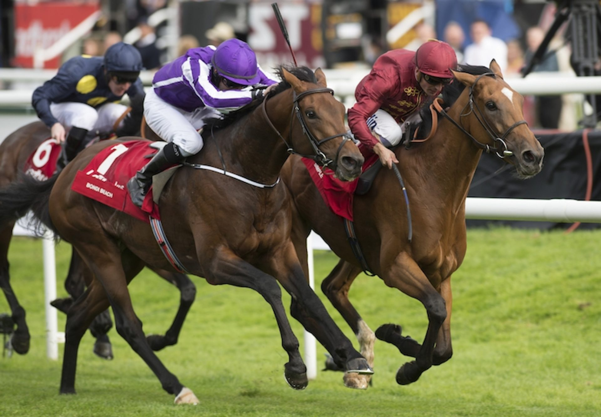 Bondi Beach (Galileo) winning the G1 St Leger at Doncaster