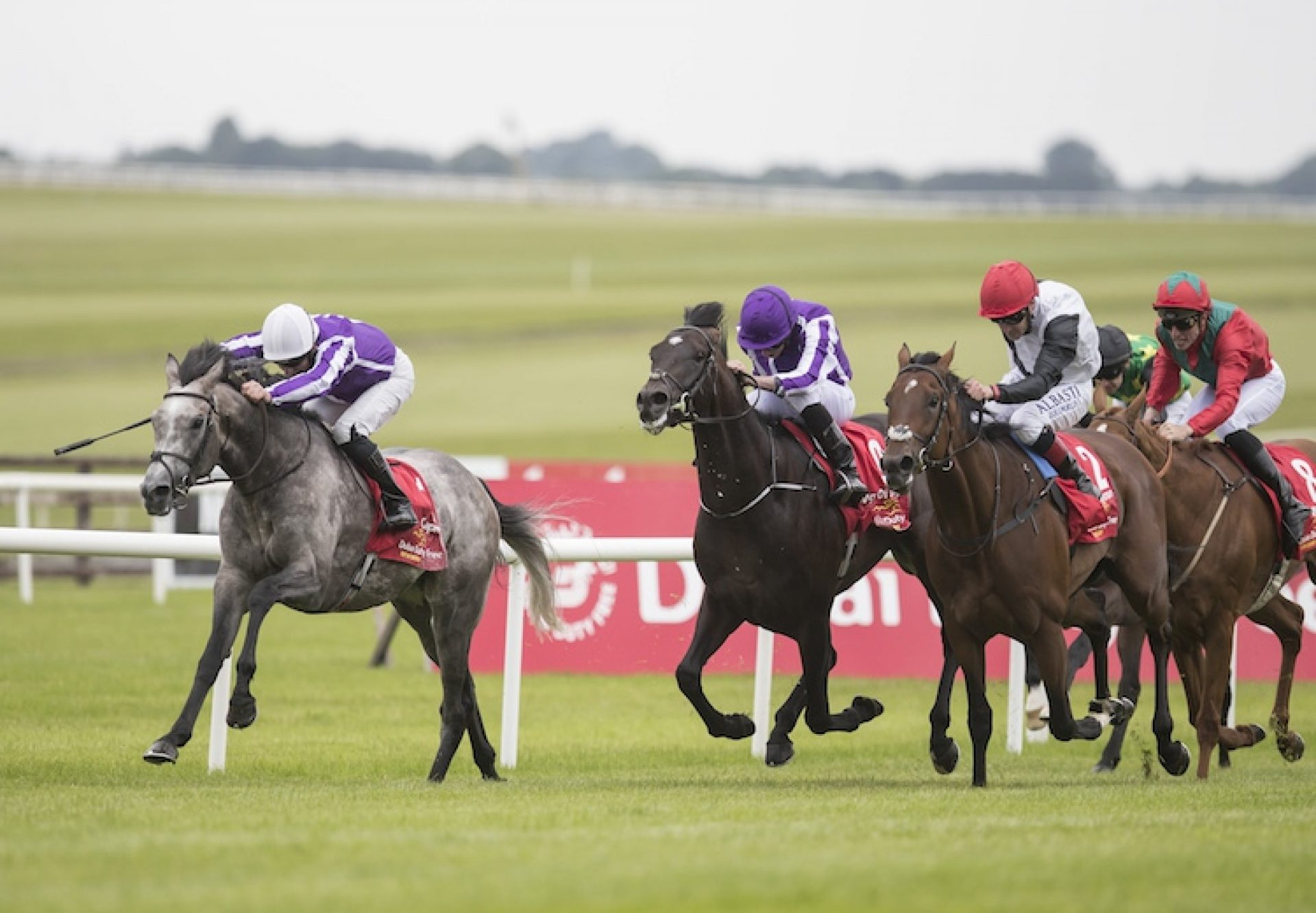 Kew Gardens (Galileo) winning the G1 St Leger at Doncaster