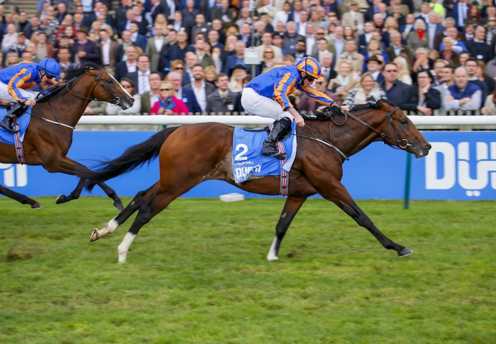 Churchill (Galileo) winning the G1 Dewhurst Stakes at Newmarket