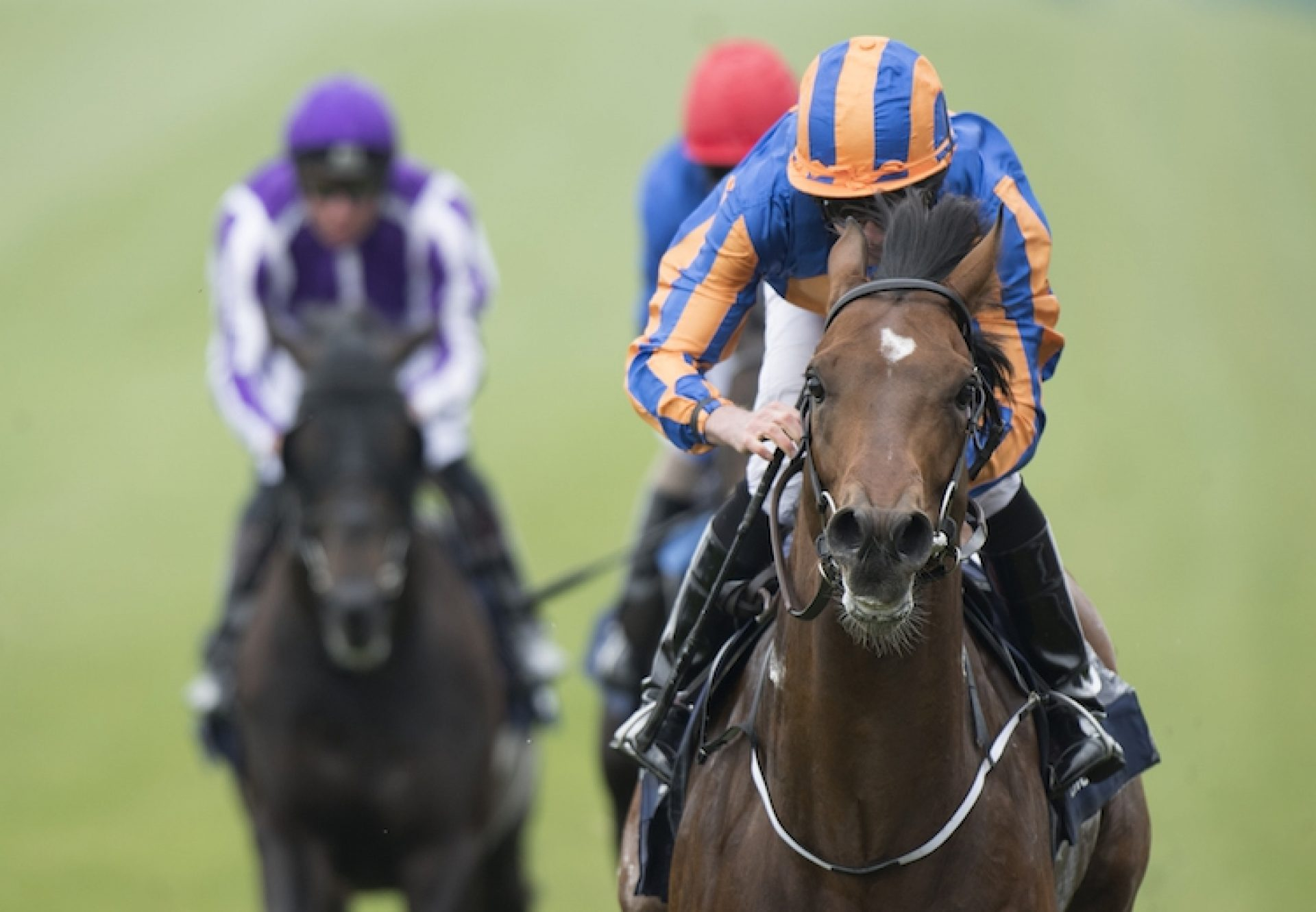 Churchill winning the G1 Irish Guineas at the Curragh