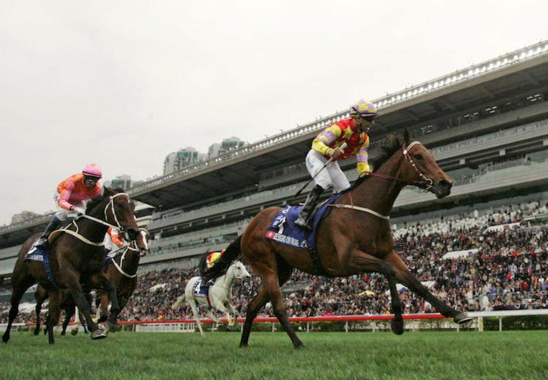 Designs On Rome (Holy Roman Emperor) winning the G1 Citibank Hong Kong Gold Cup at Sha Tin