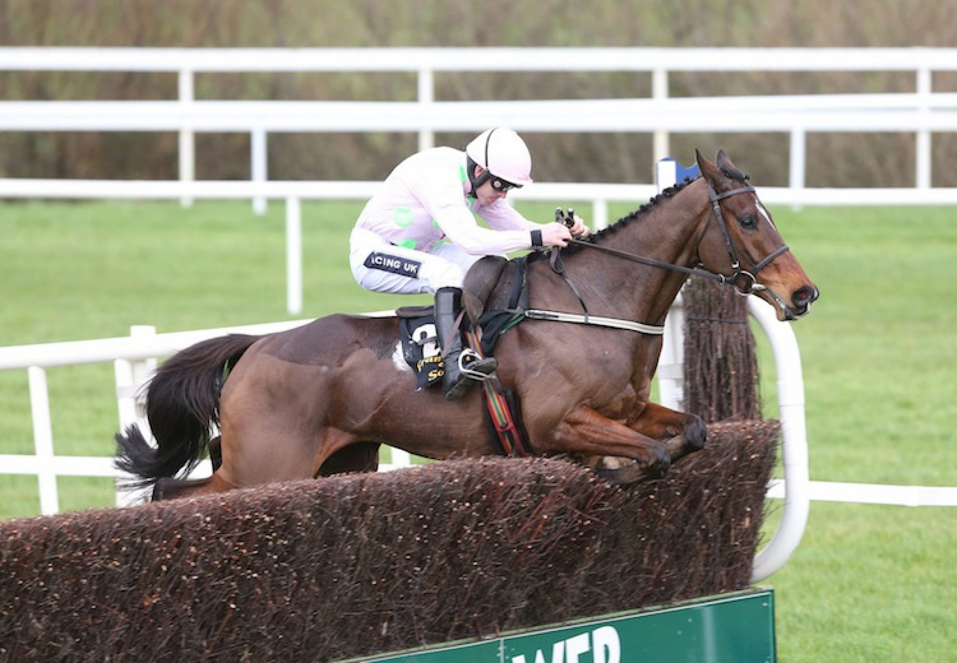 Douvan (Walk In The Park) winning the G1 Arkle Novice Chase at Leopardstown