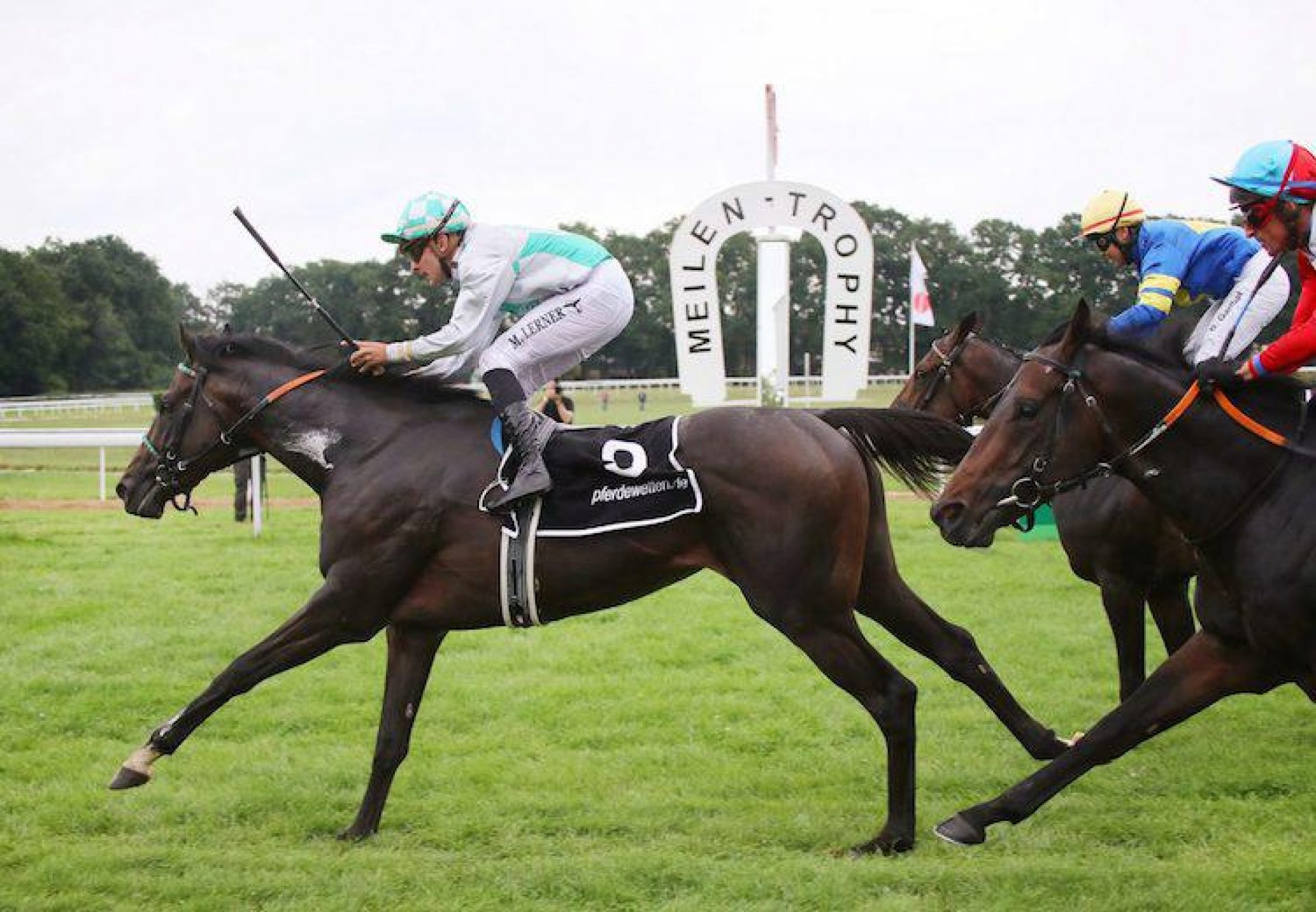 Dragon Lips (Footstepinthesand) winning the  G2 Meilen Trophy