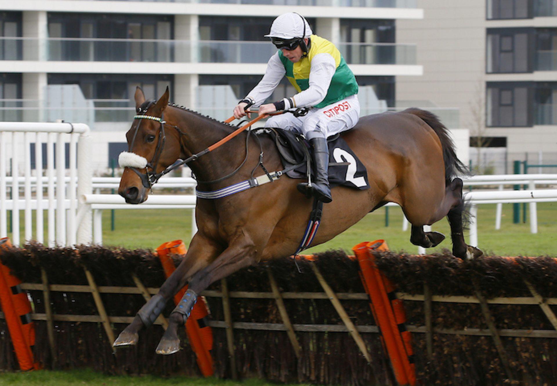 Euxton Lane (Getaway) winning a hurdle race at Newbury