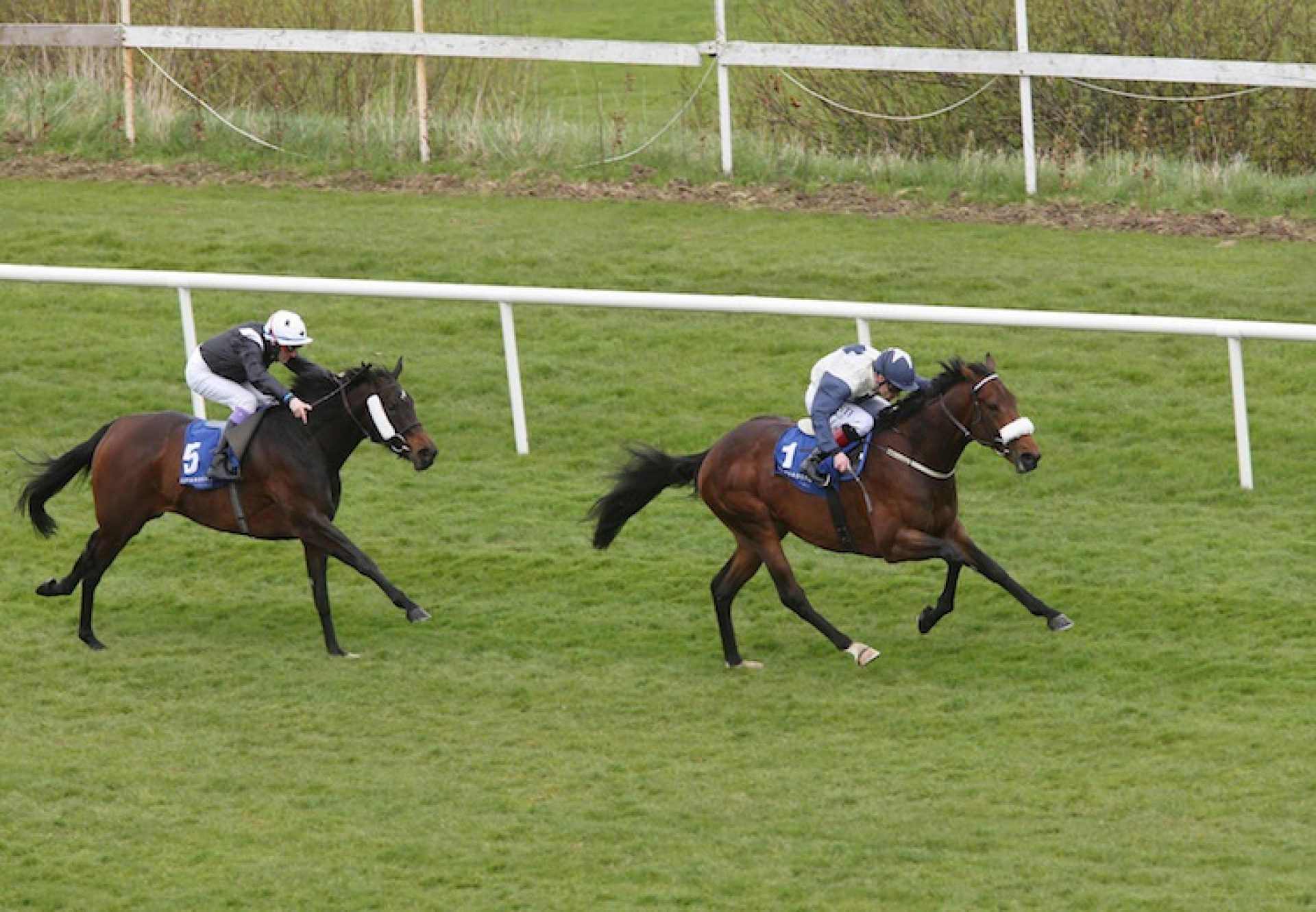 Fascinating Rock (Fastnet Rock) winning the Listed Heritage Stakes at Leopardstown