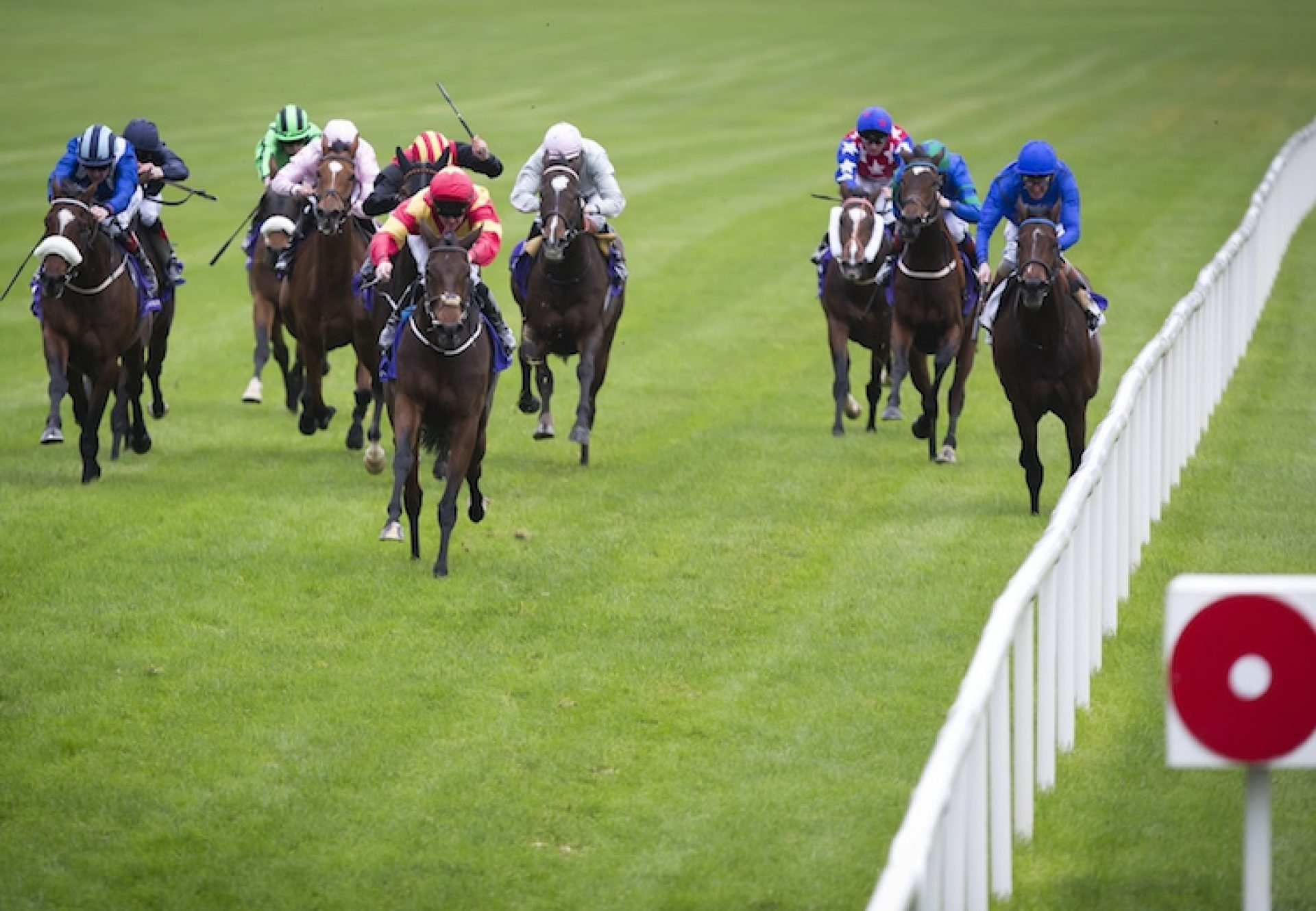 Flying Fairies (Holy Roman Emperor) winning the Listed Trigo Stakes at Leopardstown