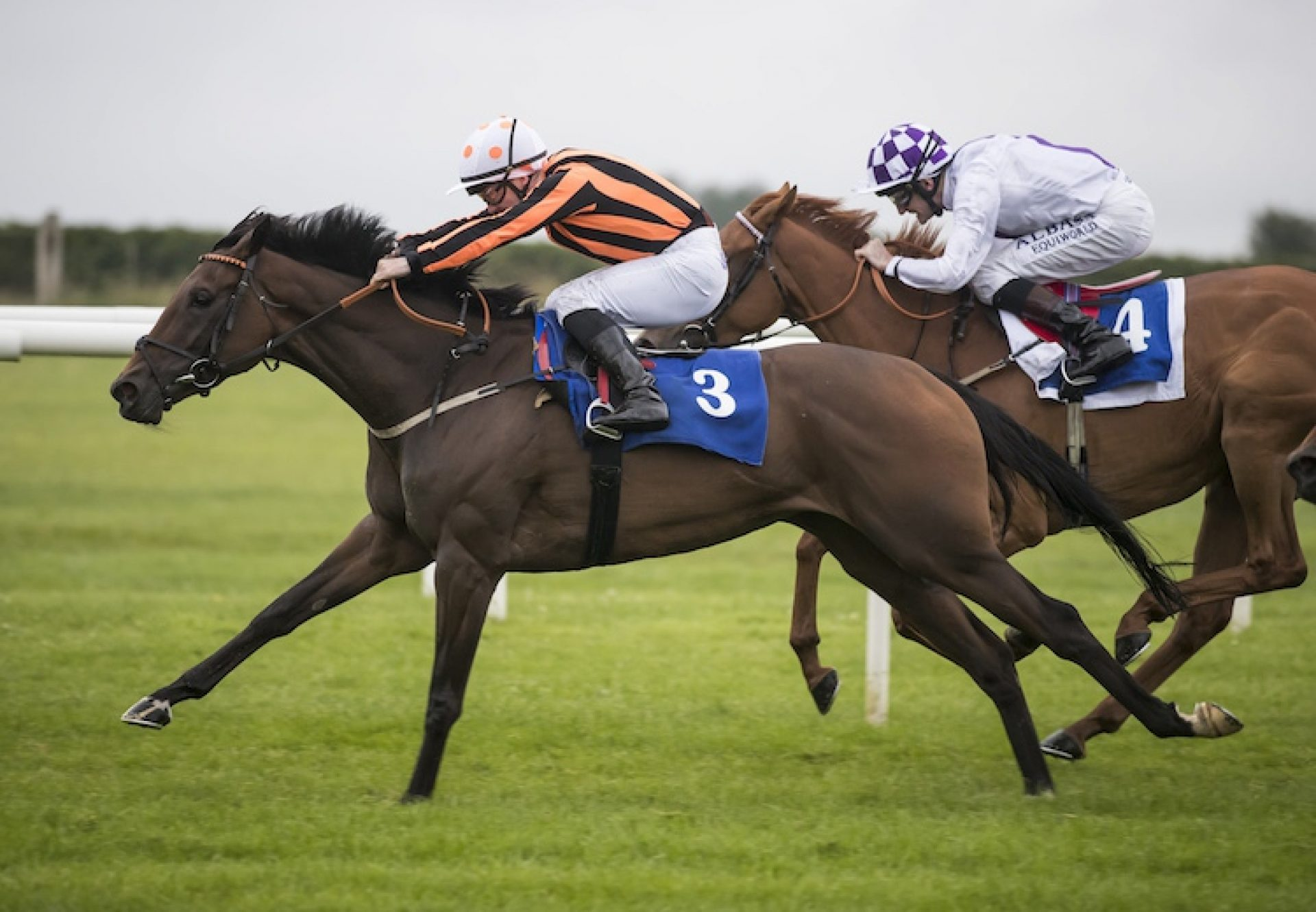 Flying Fairies (Holy Roman Emperor) winning the Listed Lenebane Stakes at Roscommon
