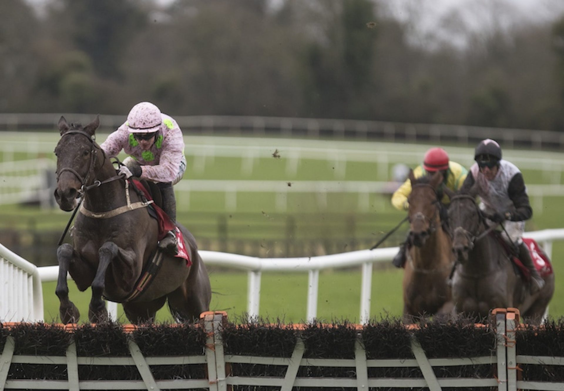 Getabird (Getaway) winning a maiden hurdle at Punchestown