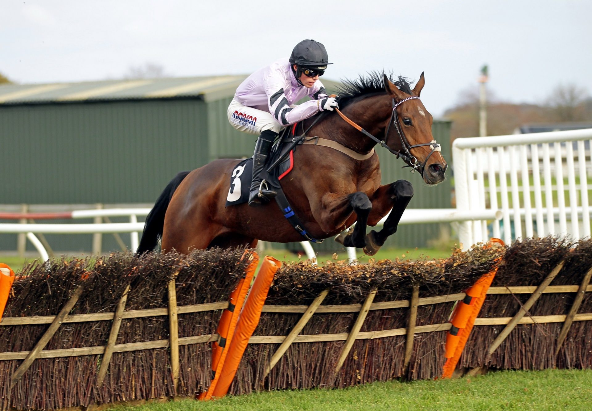 Getaway Trump (Getaway) winning over hurdles at Exeter