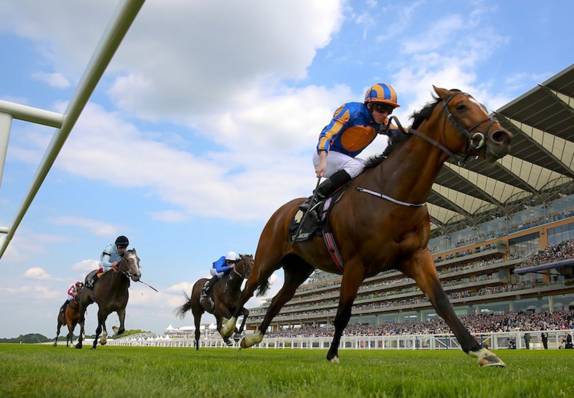 Gleneagles (Galileo) winning the G1 St James's Palace Stakes at Royal Ascot