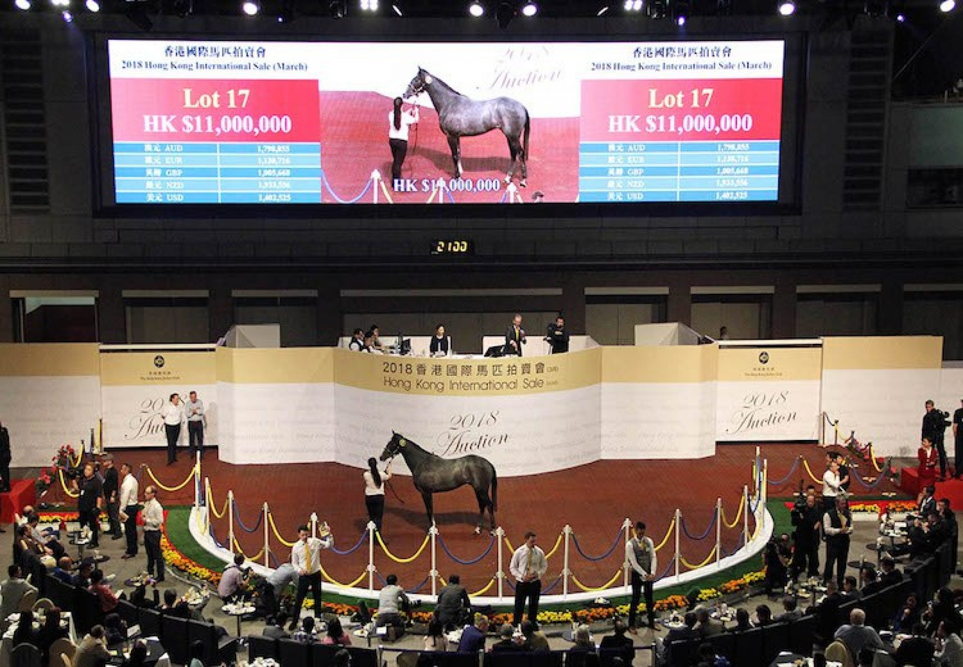 Holy Roman Emperor ex Ysoldina gelding selling for KH $11 million