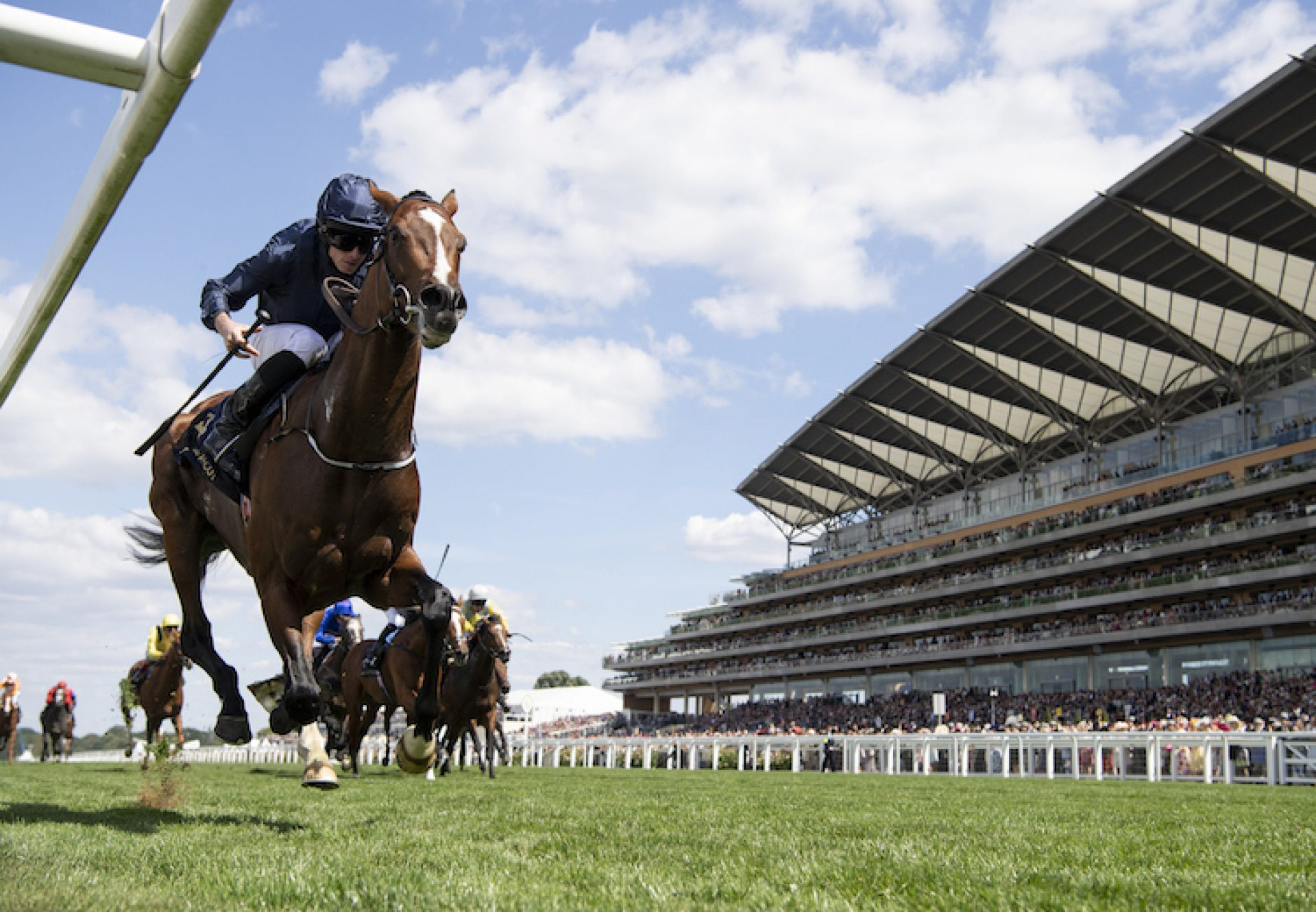 Hunting (Horn (Camelot) winning the G3 Hampton Court Stakes at Royal Ascot