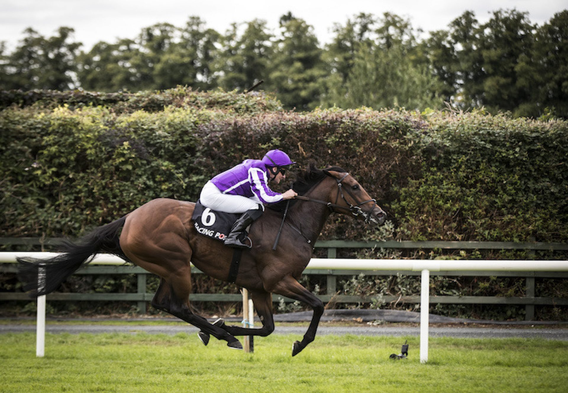 I Can Fly (Fastnet Rock) winning the Listed Vincent O'Brien Ruby Stakes at Killarney