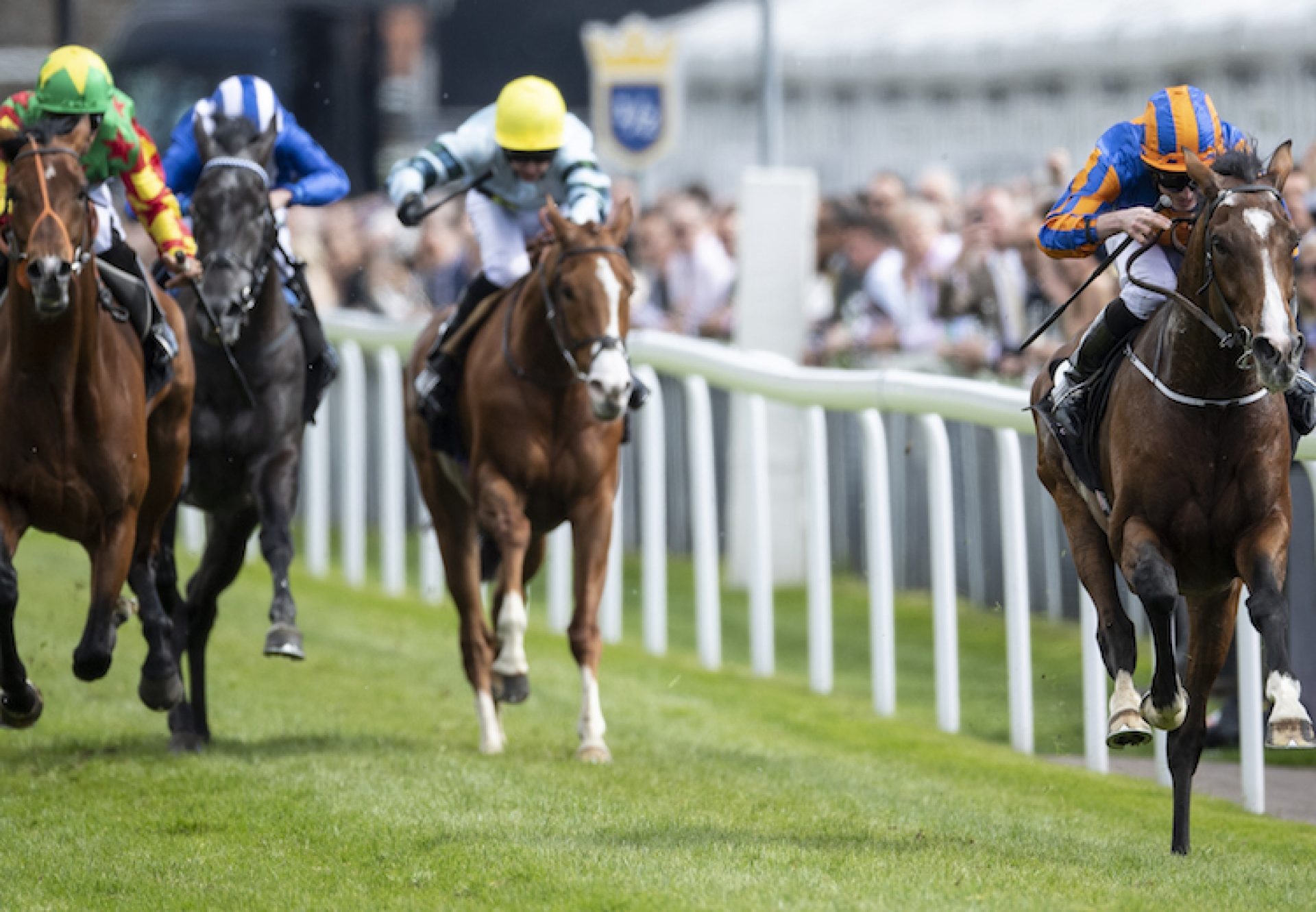Idaho (Galileo) winning the G3 Ormonde Stakes at Chester