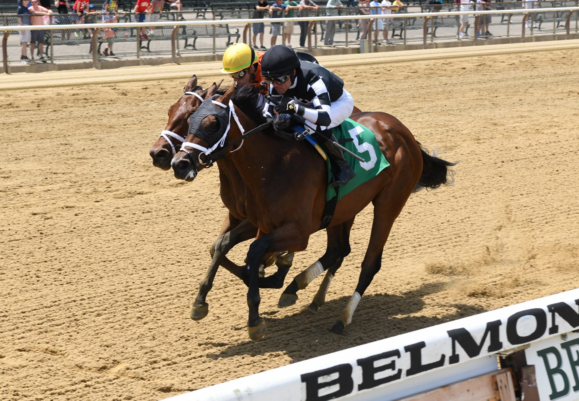 Interstatedaydream (Classic Empire) winning at Belmont Park