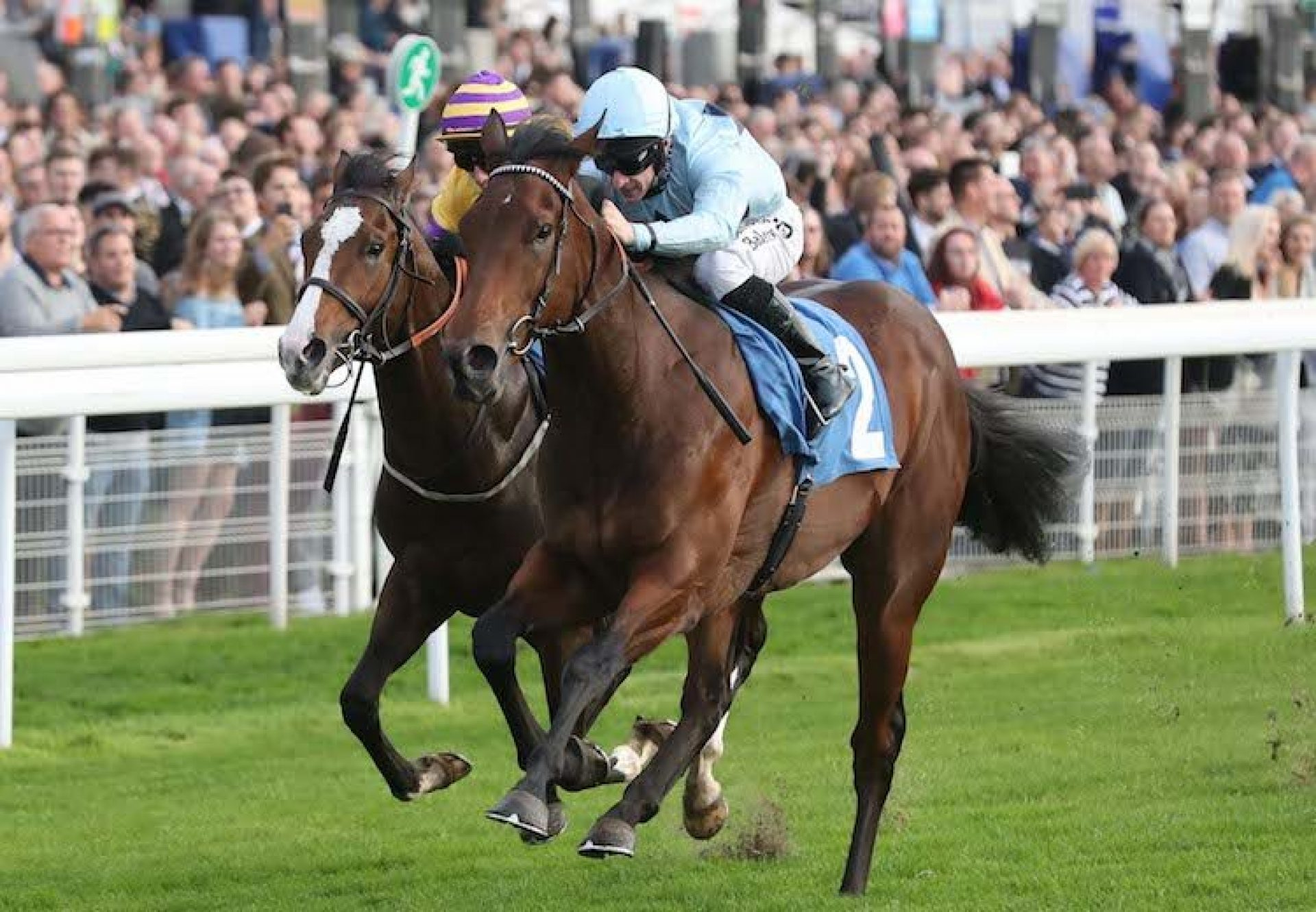 Jonah Jones (No Nay Never) winning a novice stakes at York