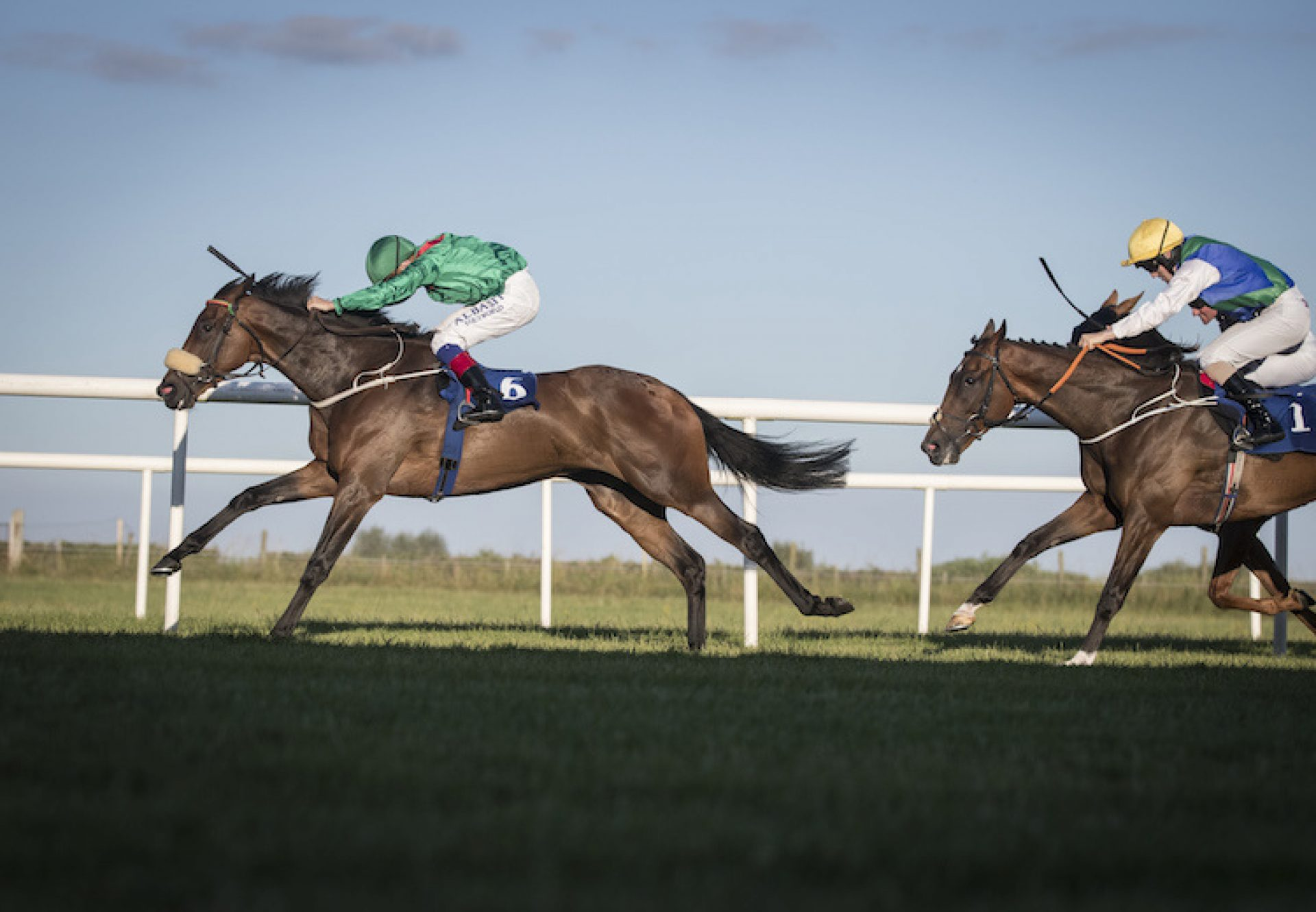 Kalaxana (Rock Of Gibraltar) winning the Lenebane Stakes (L) at Roscommon