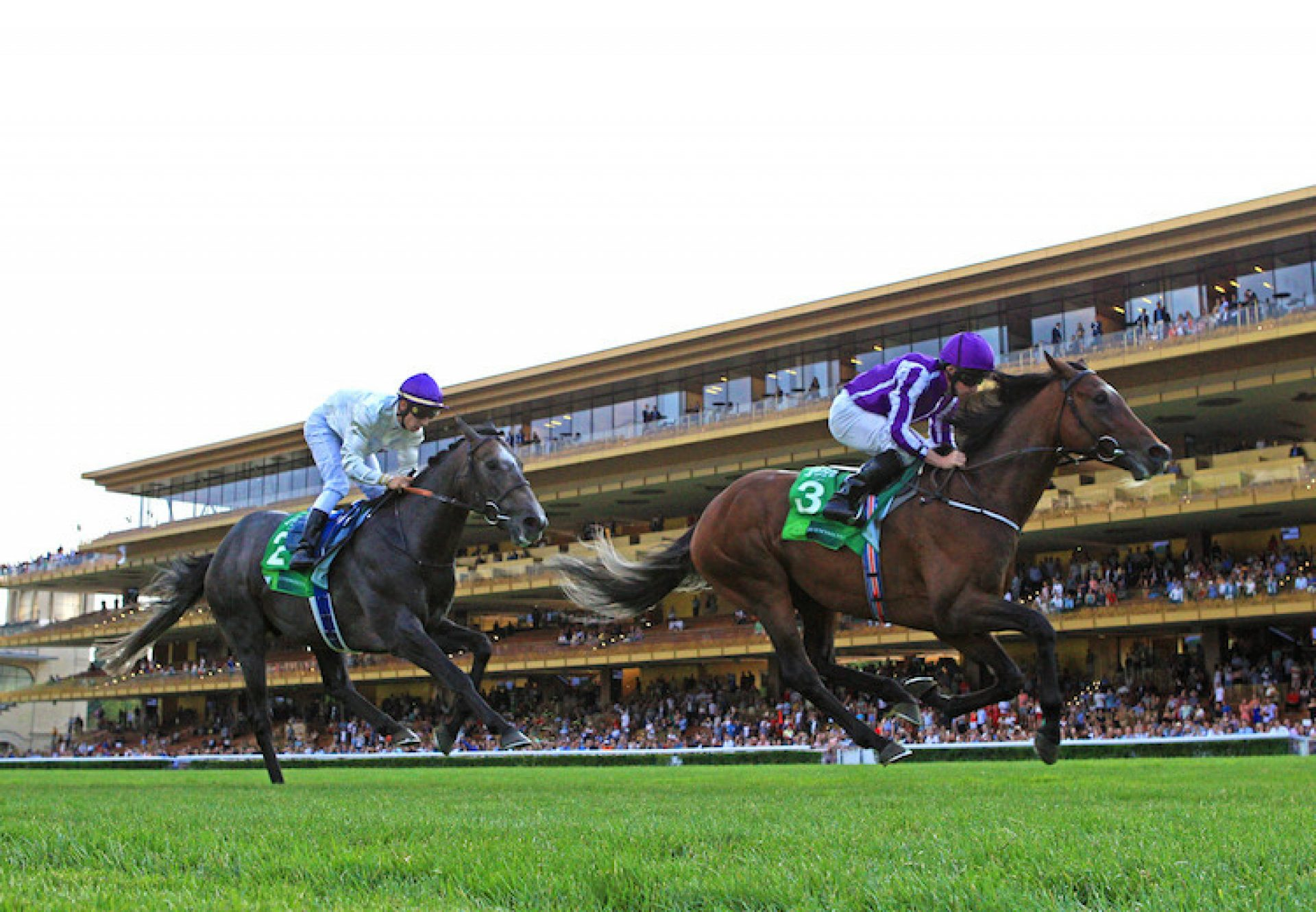 Kew Gardens (Galileo) winning the G1 Grand Prix de Paris at Longchamp