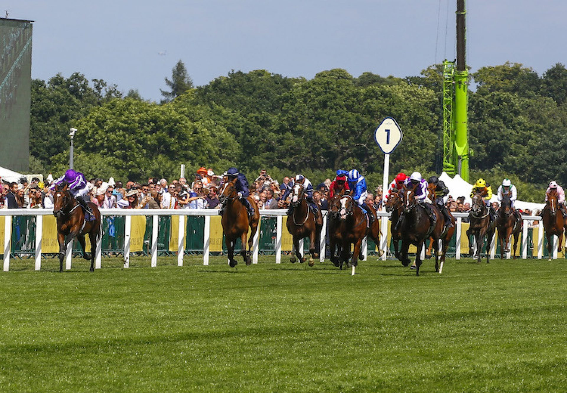 Purple Victory (War Command) winning a maiden at Saint-Cloud