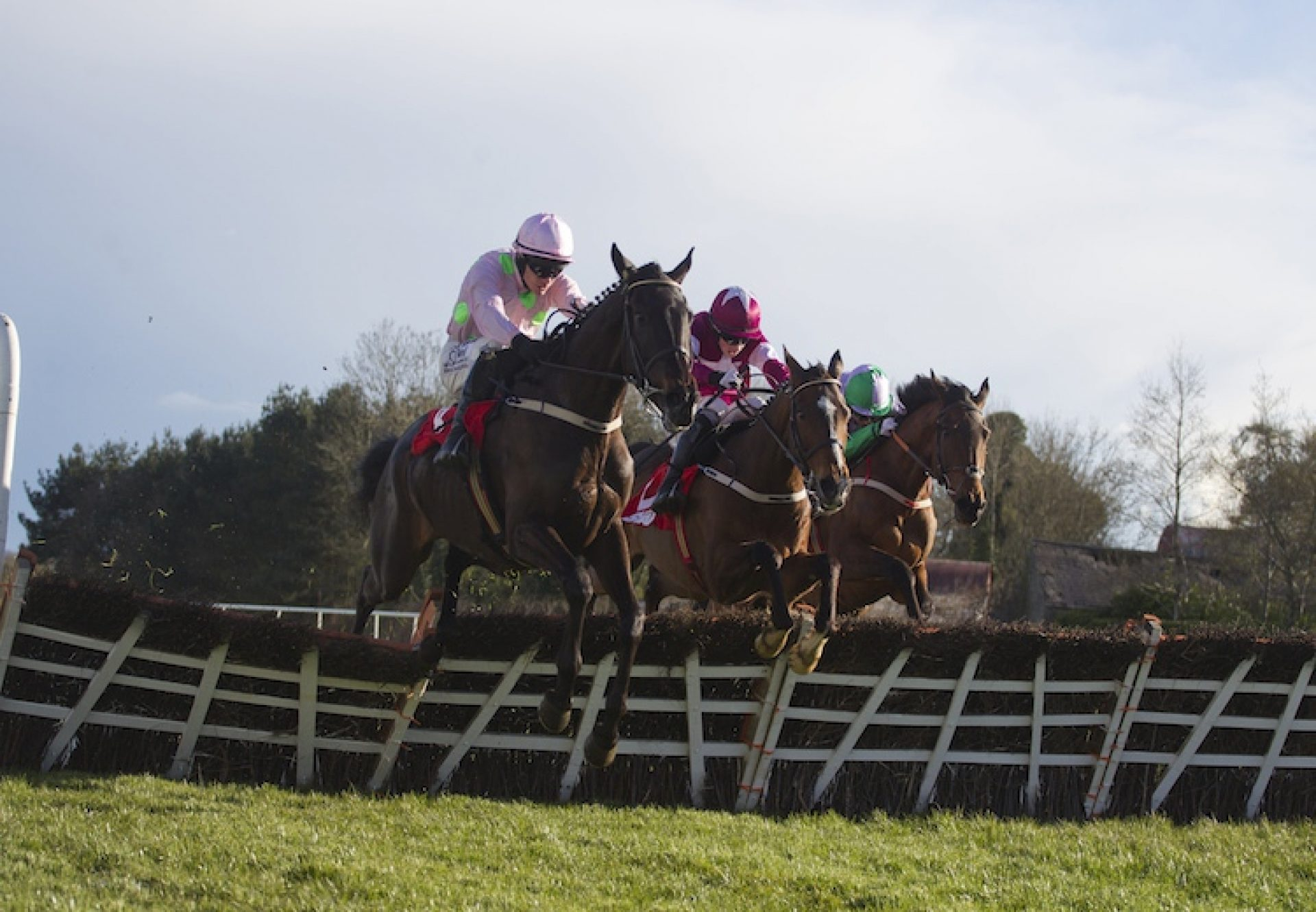 Koshari (Walk In The Park) winning a novices hurdle at Punchestown