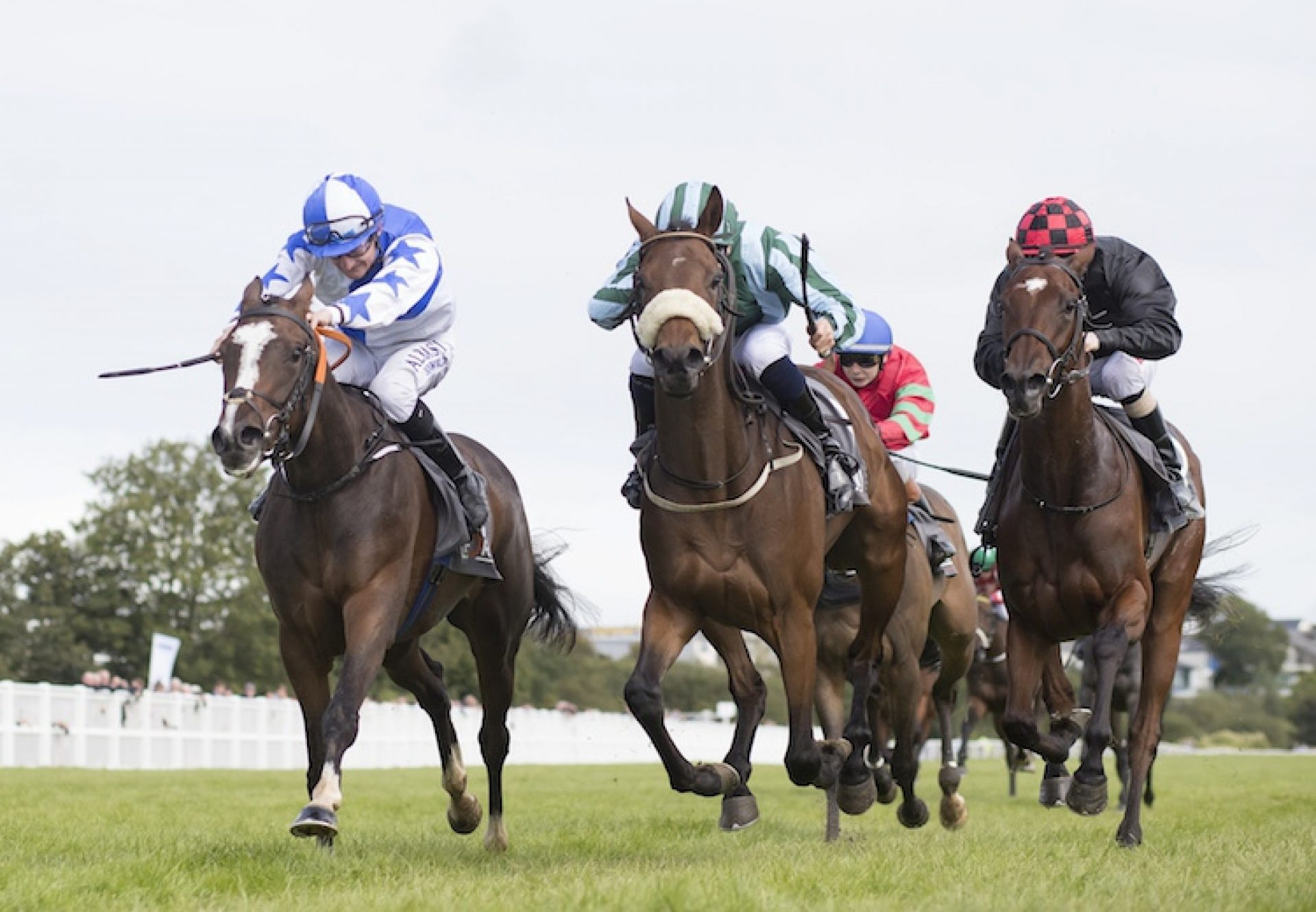 Lady Camelot (Camelot) winning at Listowel