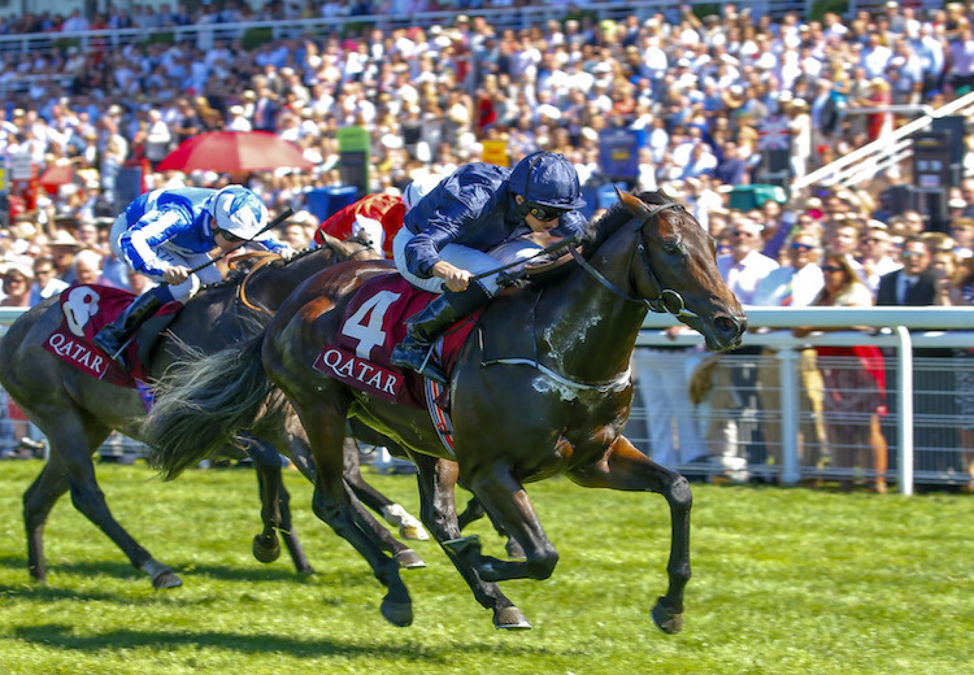 Land Force (No Nay Never) winning the G2 Richmond Stakes at Goodwood
