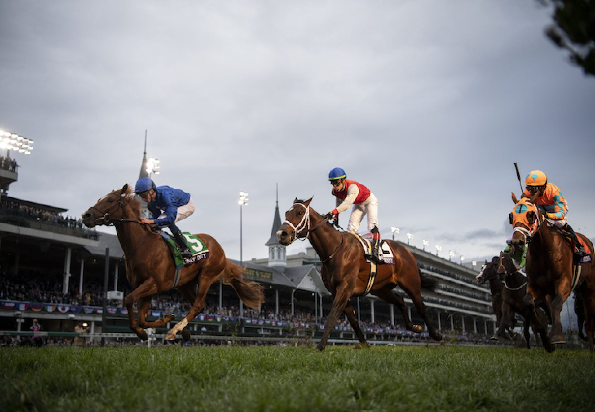 Line Of Duty (Galileo) winning the G1 Breeders Cup Turf at Churchill Downs