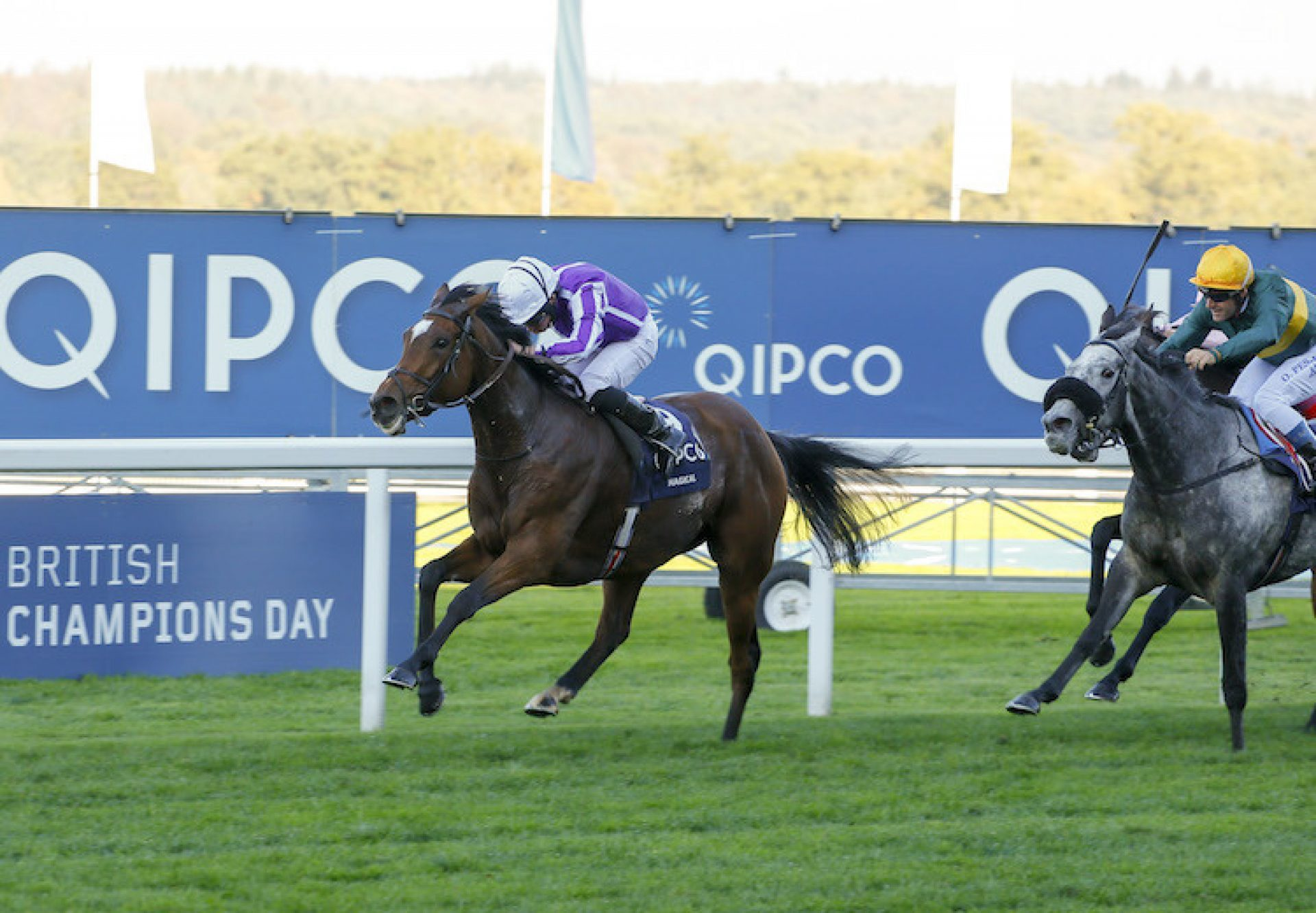 Magical (Galileo) winning the G1 British Champions Fillies & Mares Stakes at Ascot