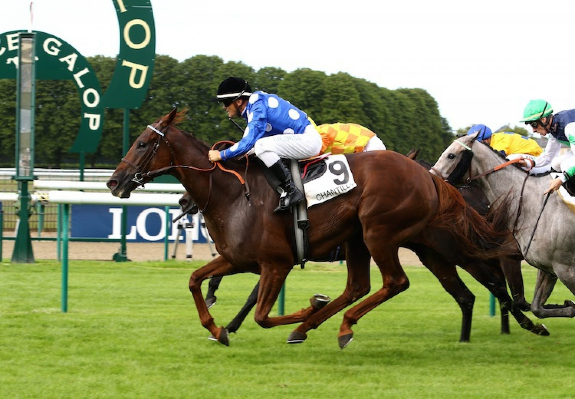 Mambomiss (Mastercraftsman) winning the Listed Prix des Tourelles