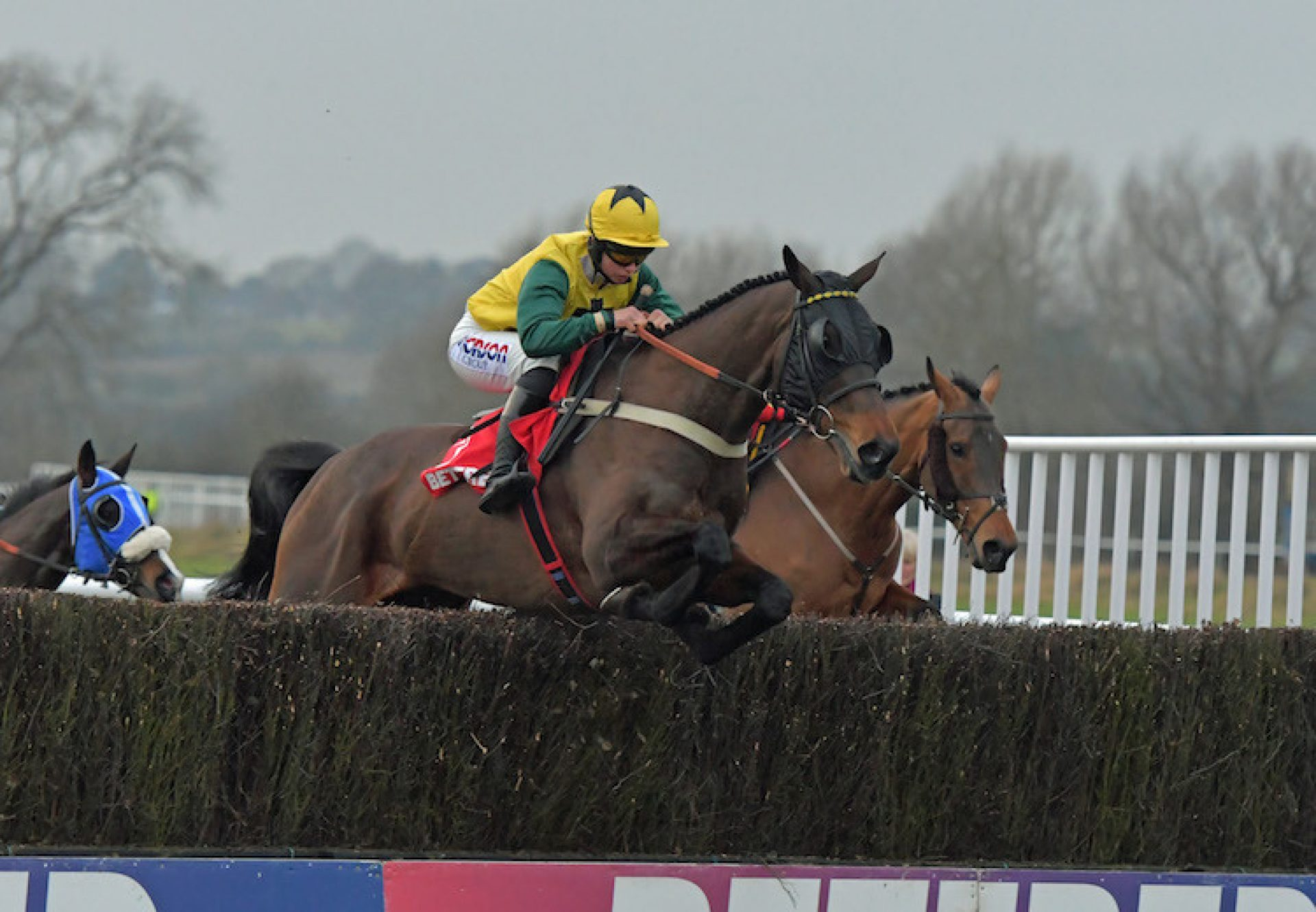 Milansbar (Milan) winning the G3 Classic Chase at Warwick