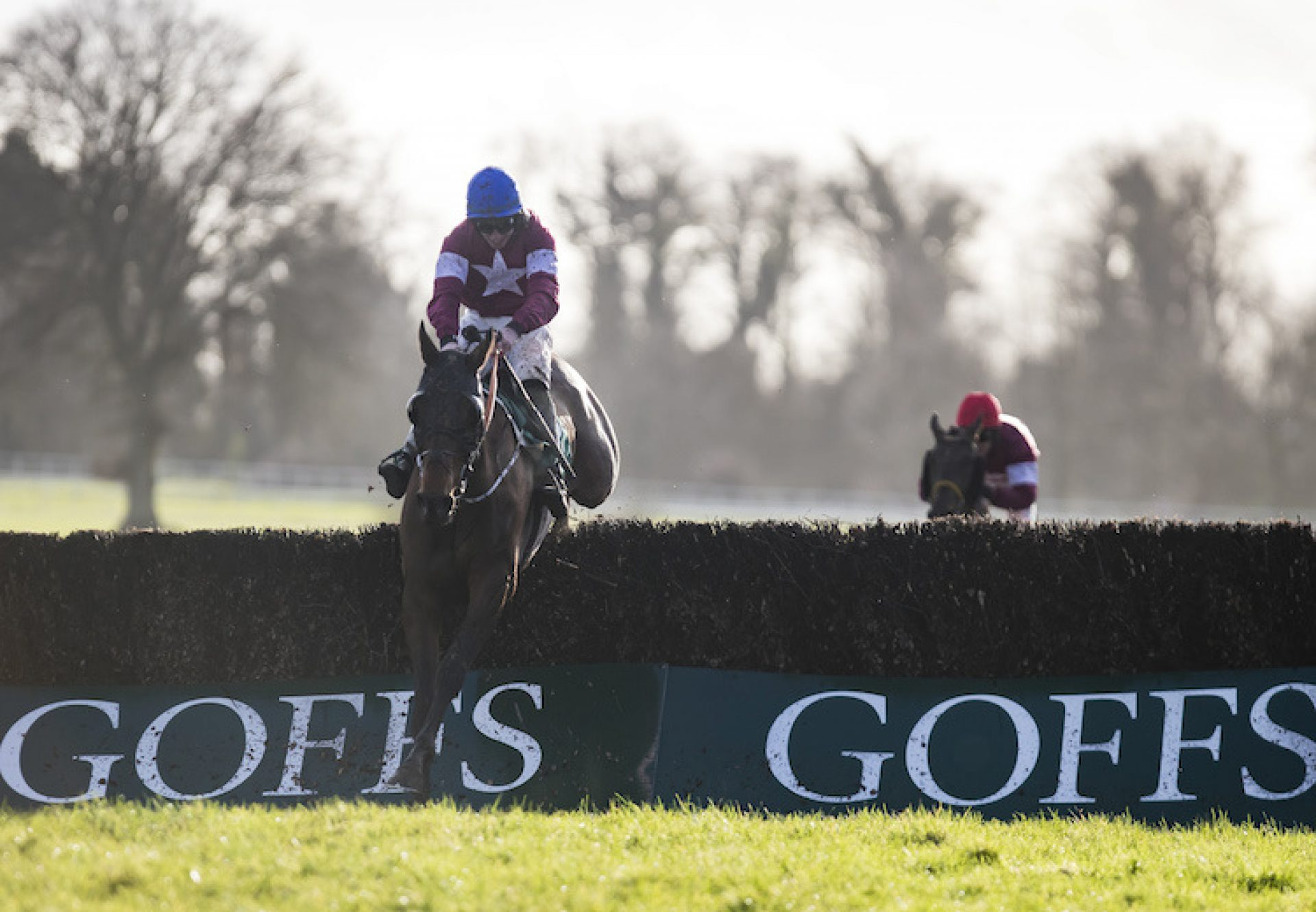 Monbeg Notorious (Milan) winning the Thyestes at Gowran Park
