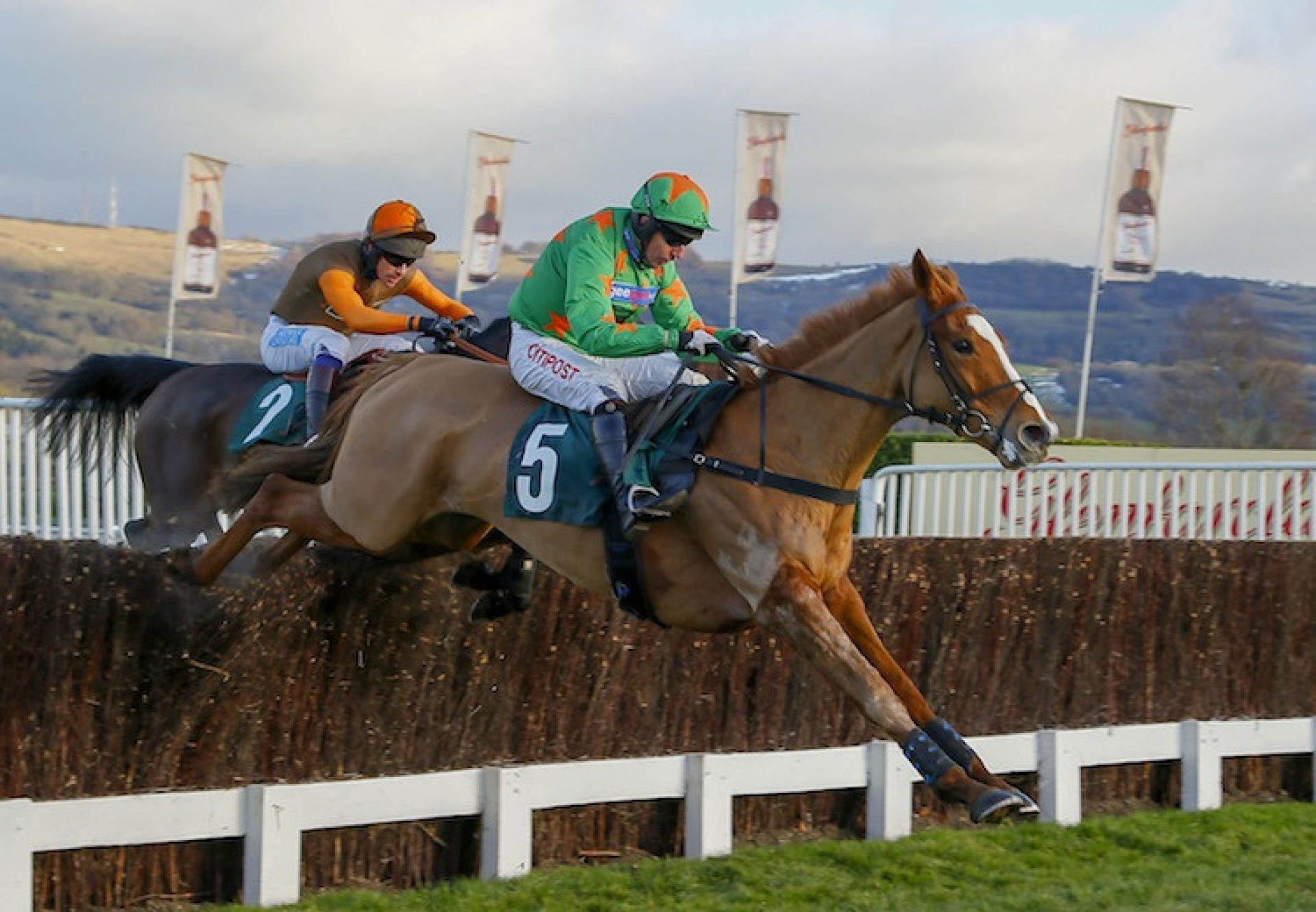 Ms Parfois (Mahler) winning over fences at Cheltenham