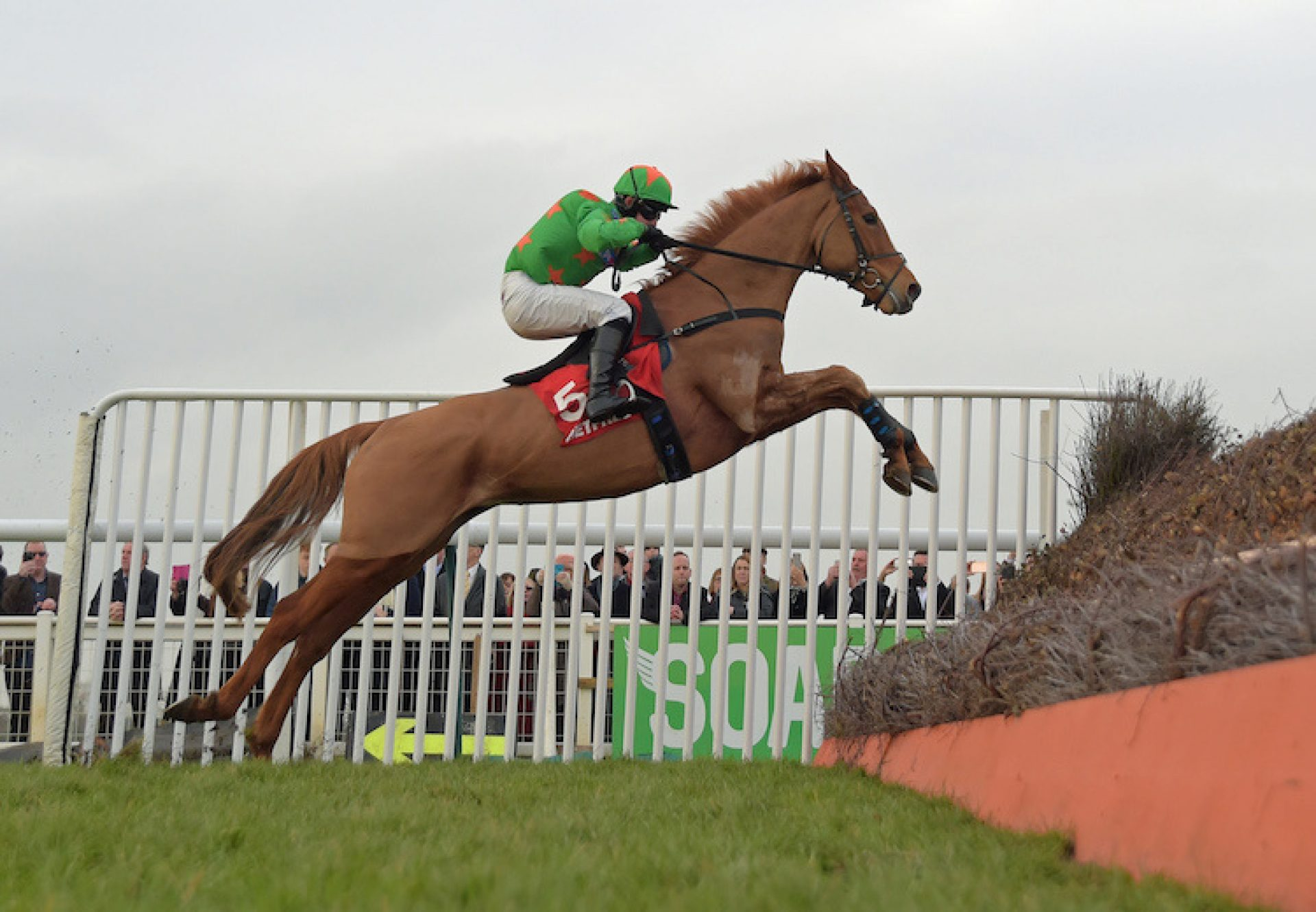 Ms Parfois (Mahler) winning the Listed Hampton Novices' Chase at Warwick