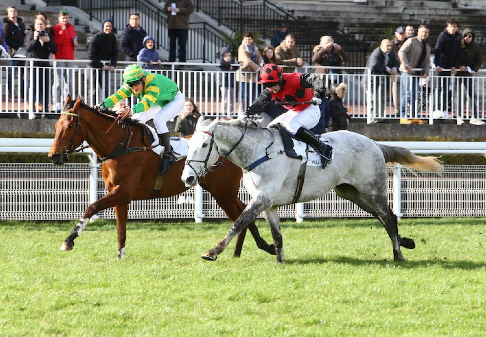 Park Light (Walk In The Park) winning a Listed hurdle at Auteuil