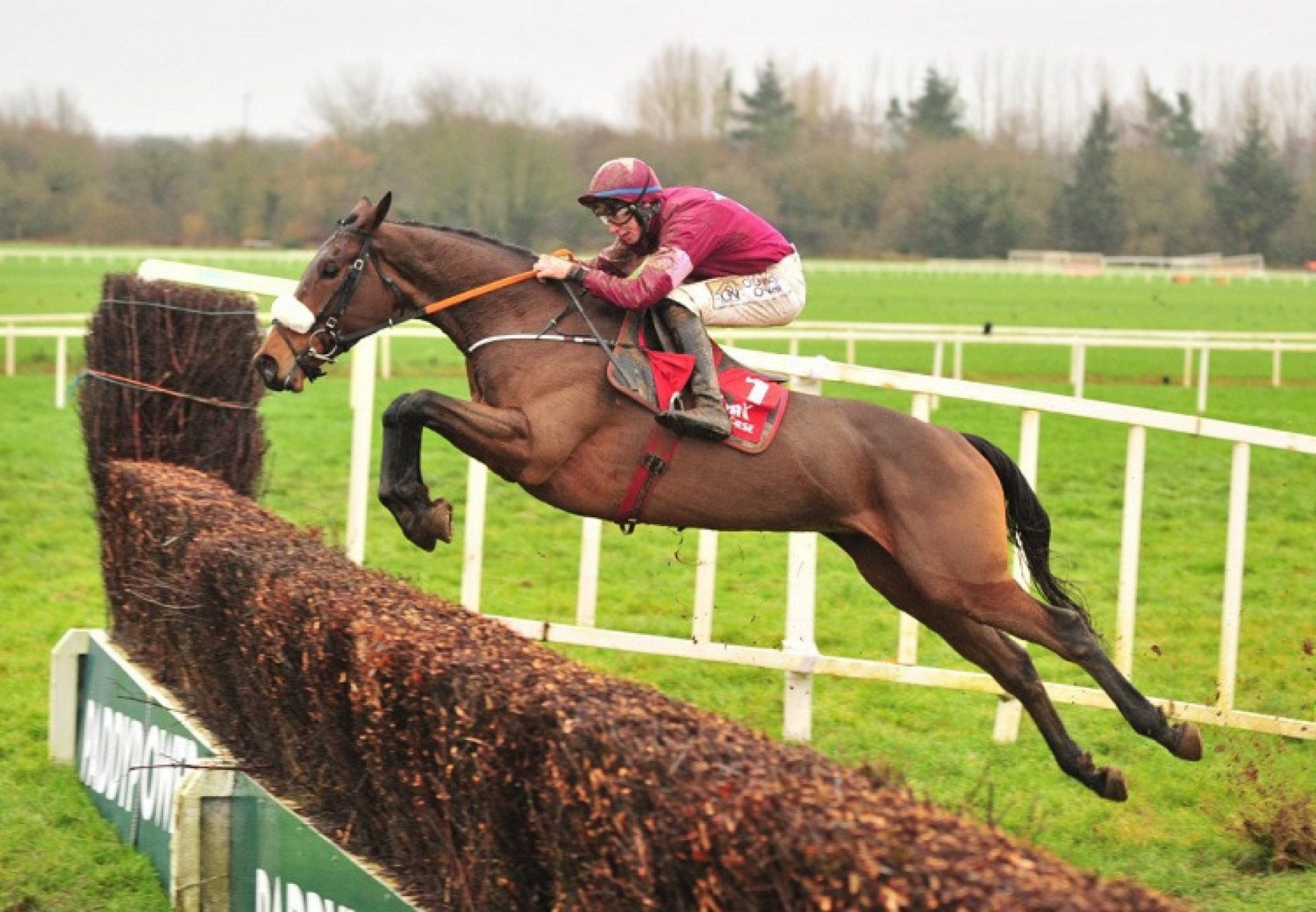 Shattered Love (Yeats) winning the G3 Kerry Group Irish EBF Novice Chase at Cork